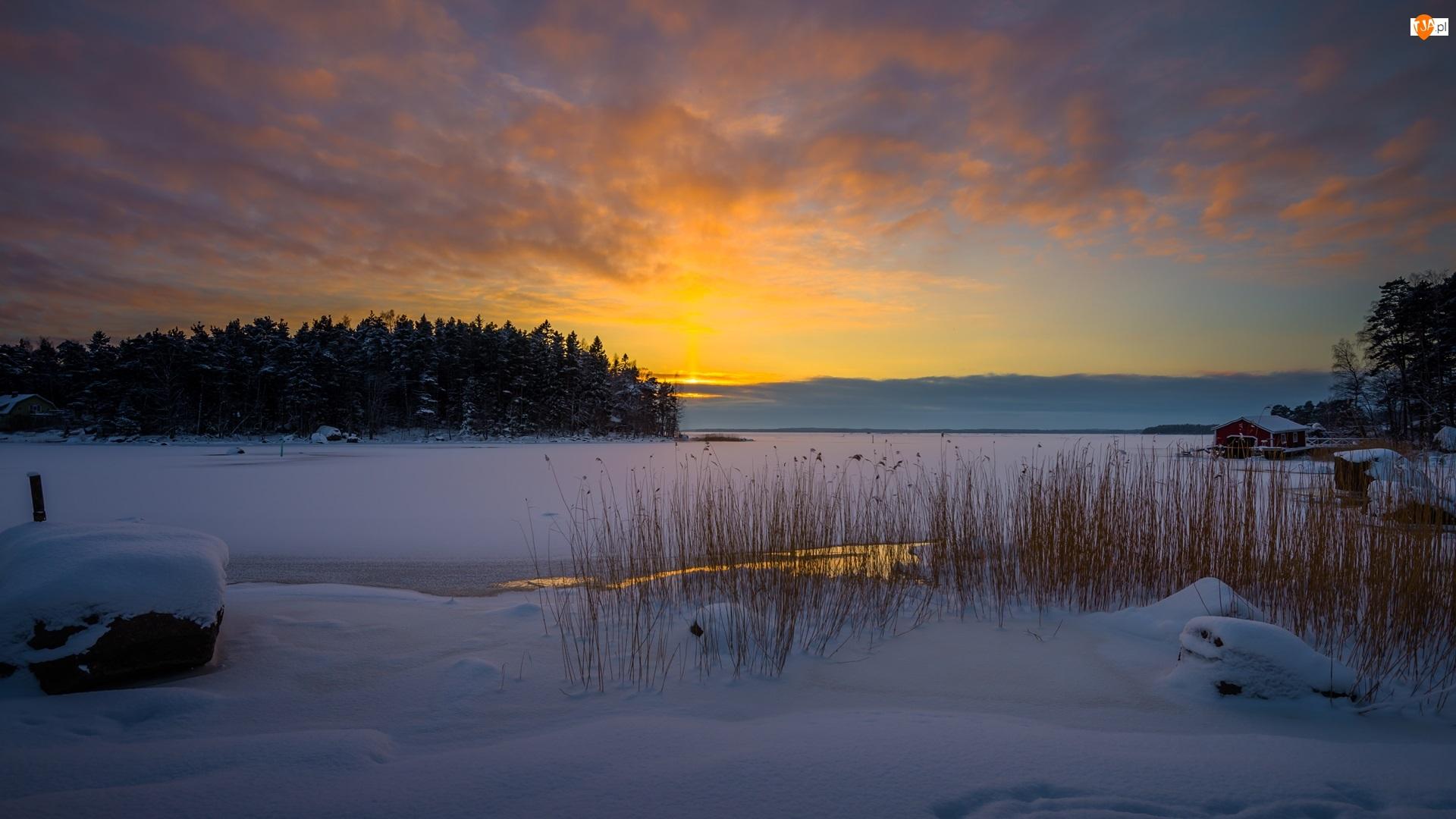 Las, Zima, Domy, Chmury, Drzewa, Zachód słońca