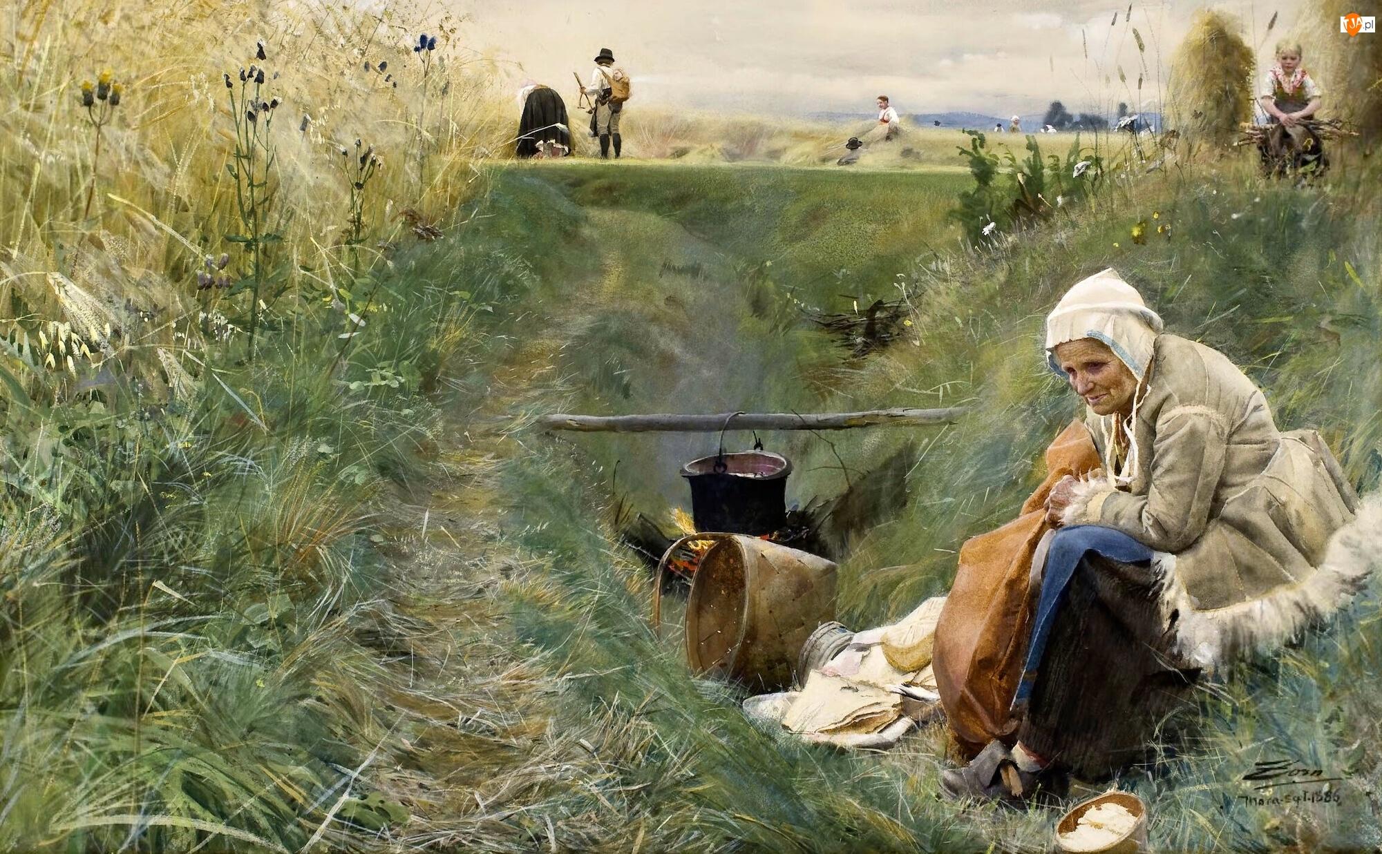 Obraz, Malarstwo, Kobieta, Pole, Anders Zorn, Ognisko