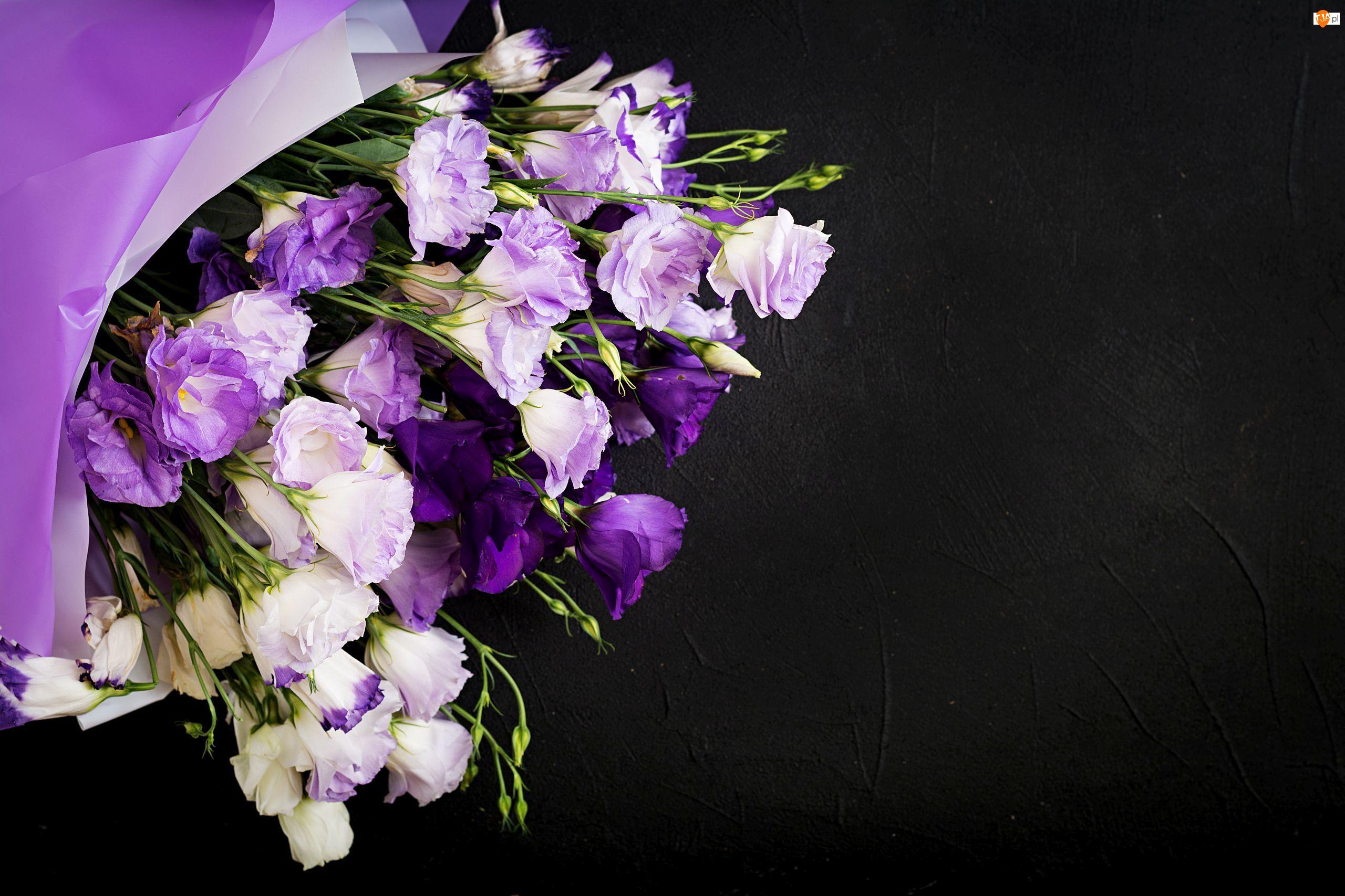 Eustoma, Tło, Kwiaty, Fioletowo-białe, Czarne