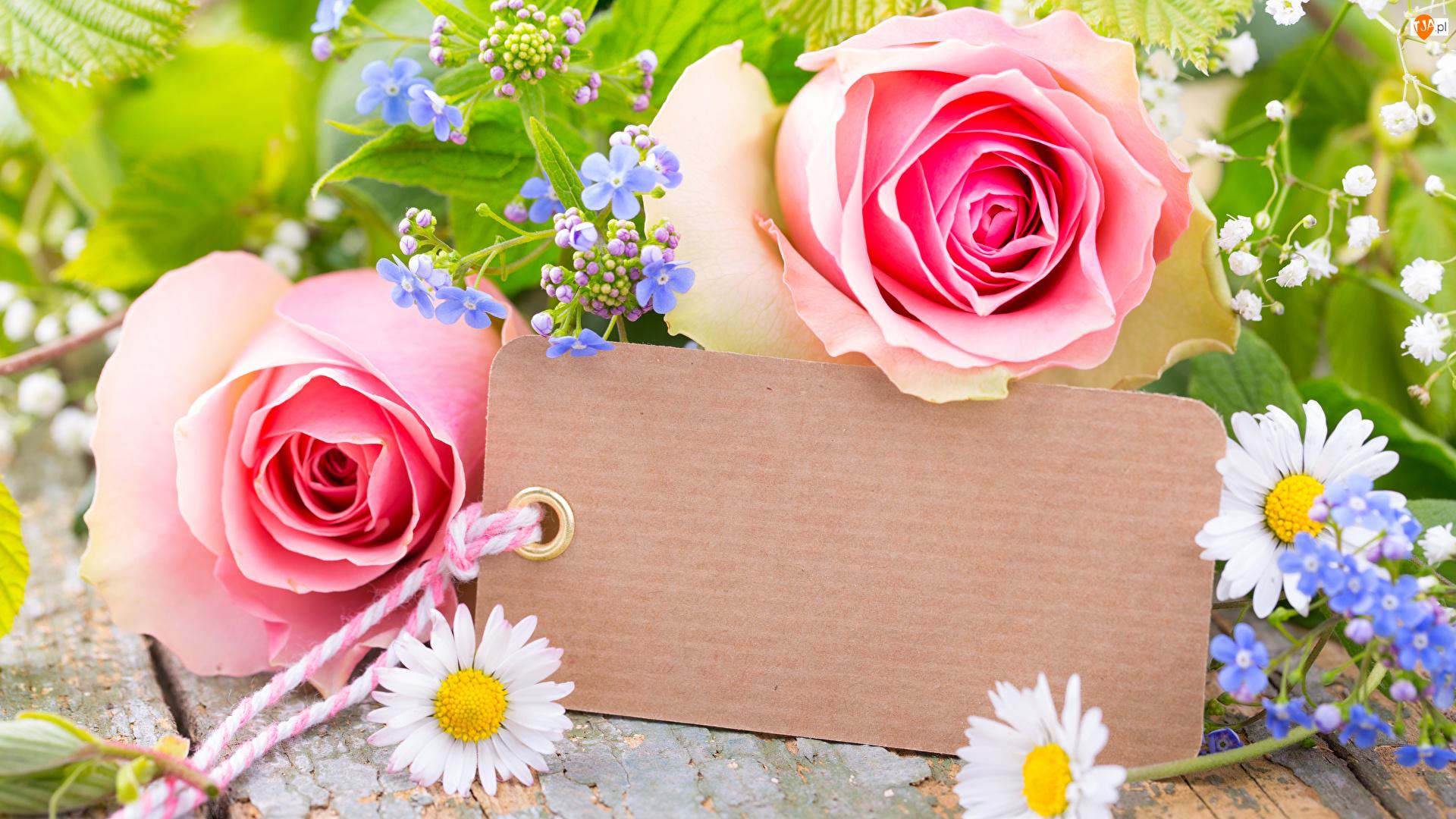 Zawieszka, Kwiaty, Róże, Stokrotki
