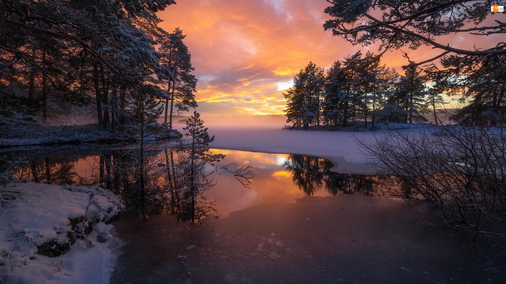 Zachód słońca, Zima, Jezioro, Ringerike, Śnieg, Drzewa, Norwegia, Lód