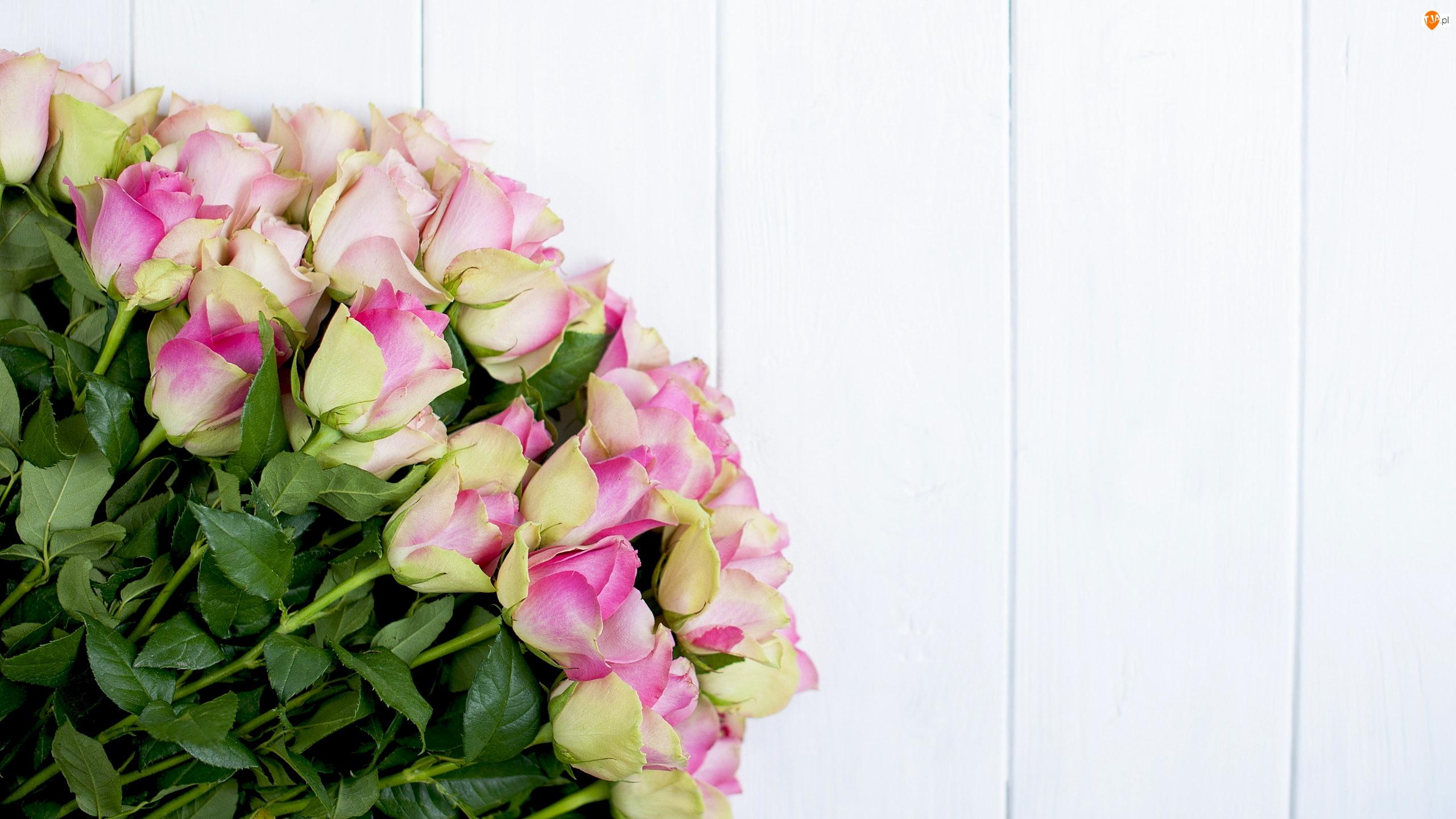 Deski, Żółto-różowe, Róże