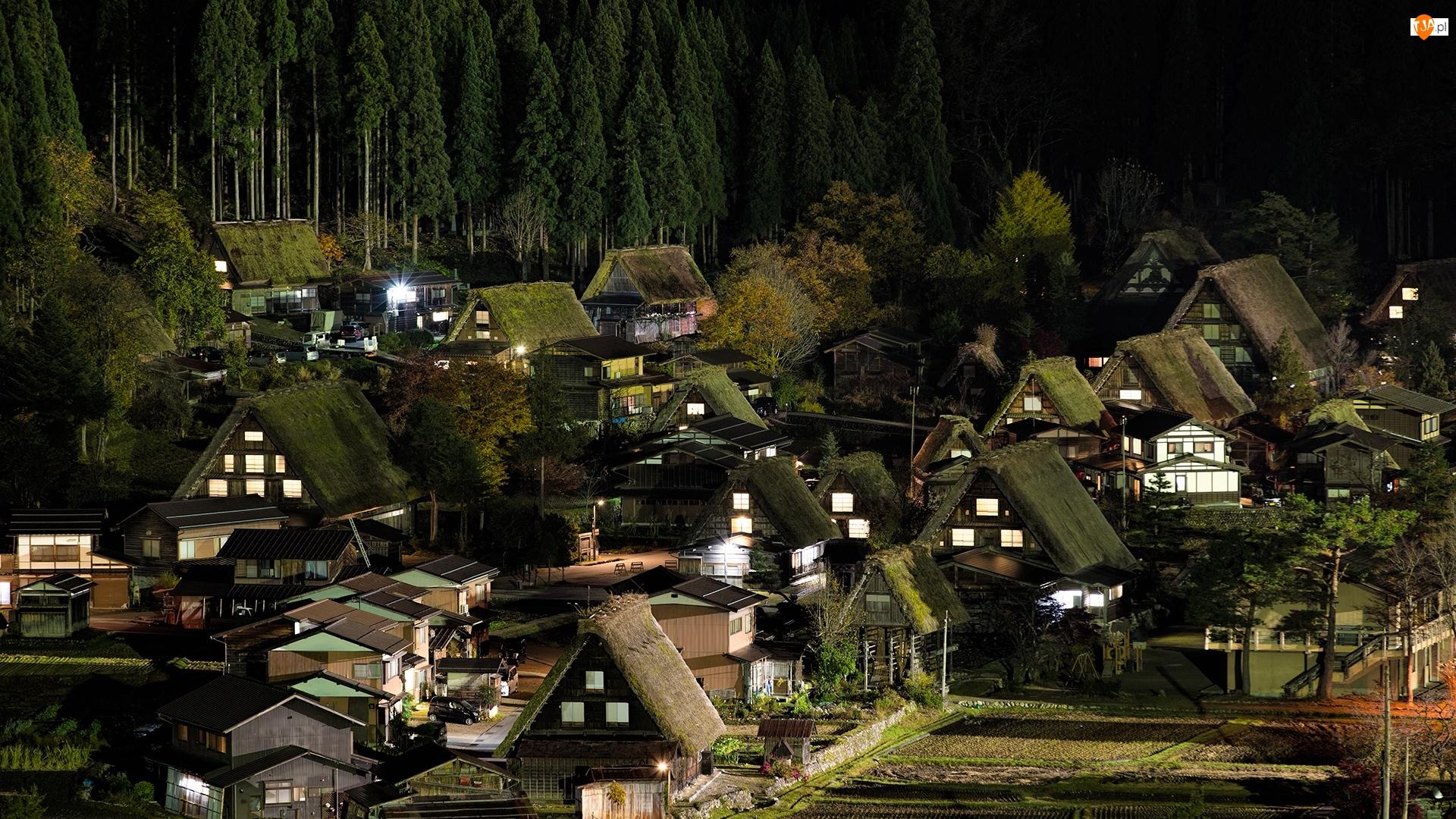 Prefektura Gifu, Wioska Shirakawa, Noc, Las, Japonia, Domy