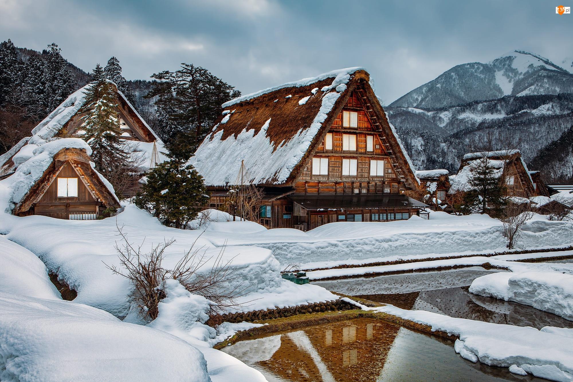 Góry, Japonia, Zima, Drzewa, Wieś Shirakawa, Domy, Staw, Prefektura Gifu
