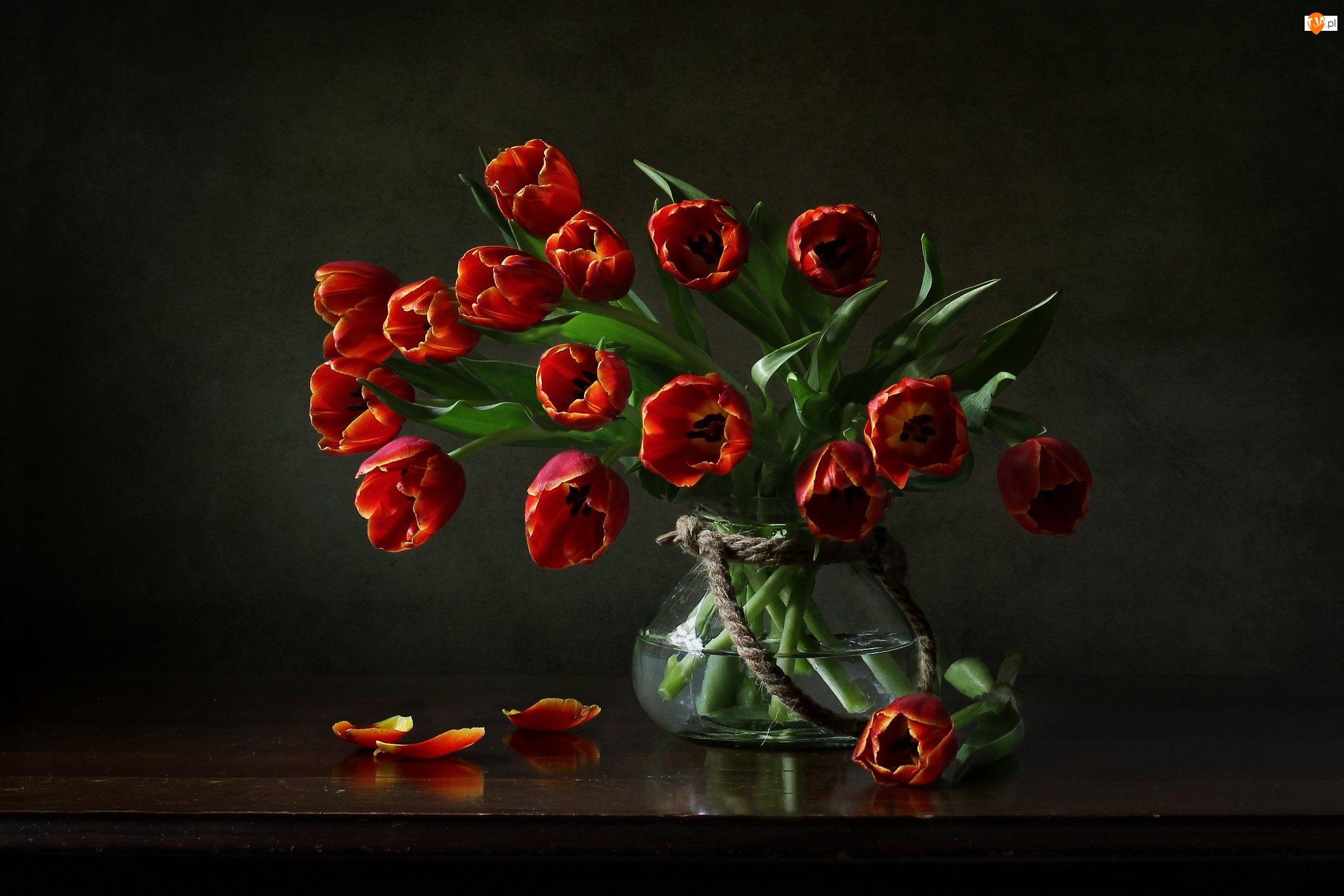 Wazon, Bukiet, Czerwone, Tulipany
