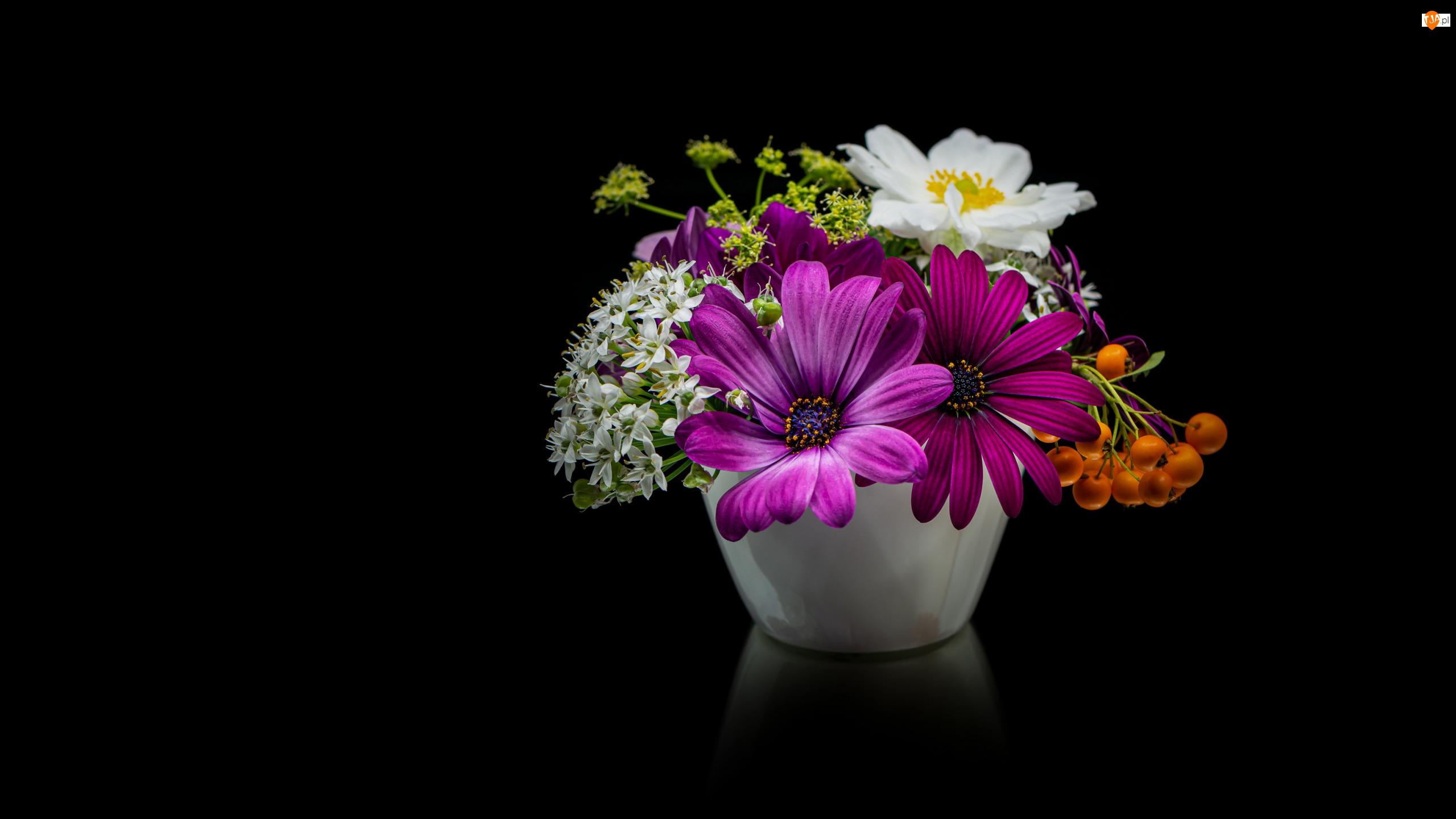 Bukiet, Kwiaty, Naczynie, Tło, Stokrotki afrykańskie, Ciemne