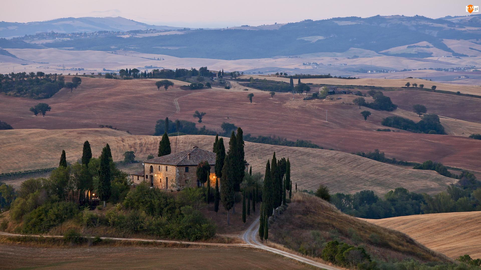 Dom, Wzgórze, Cyprysy, Włochy, Drzewa, Toskania
