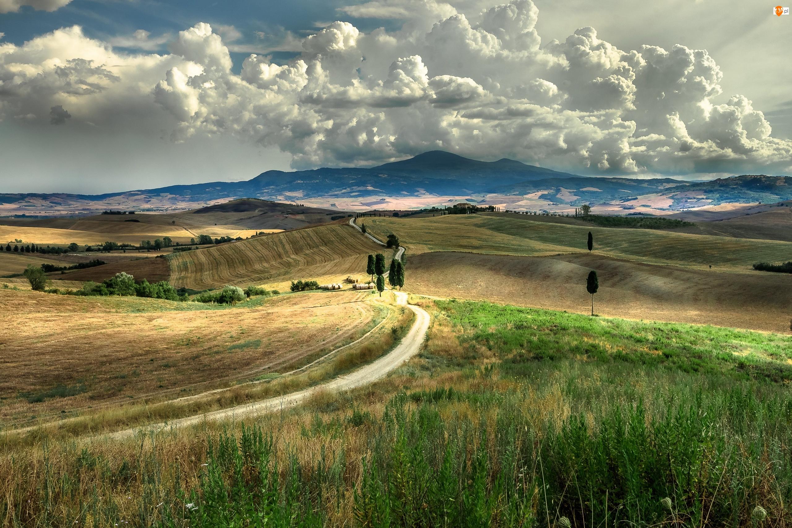 Toskania, Pola, Chmury, Włochy, Drzewa, Wzgórza, Droga