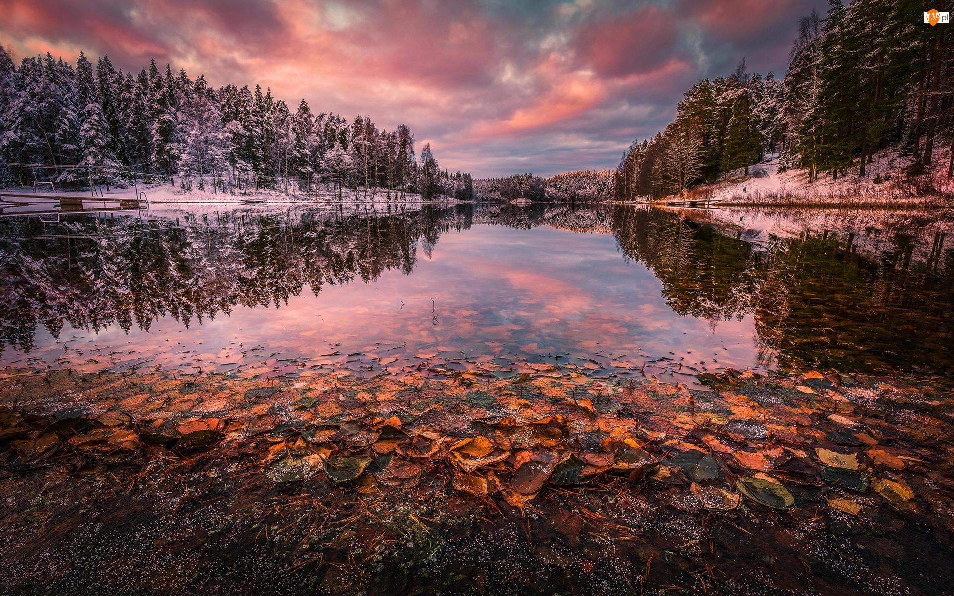 Liście, Drzewa Jezioro, Jezioro, Zima, Ośnieżone