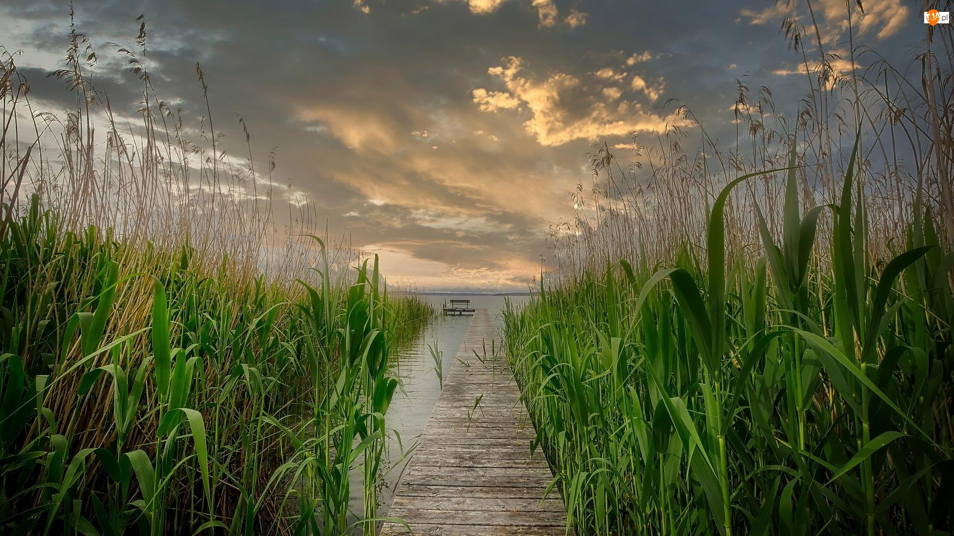 Wschód słońca, Trzcina, Pomost, Jezioro, Chmury