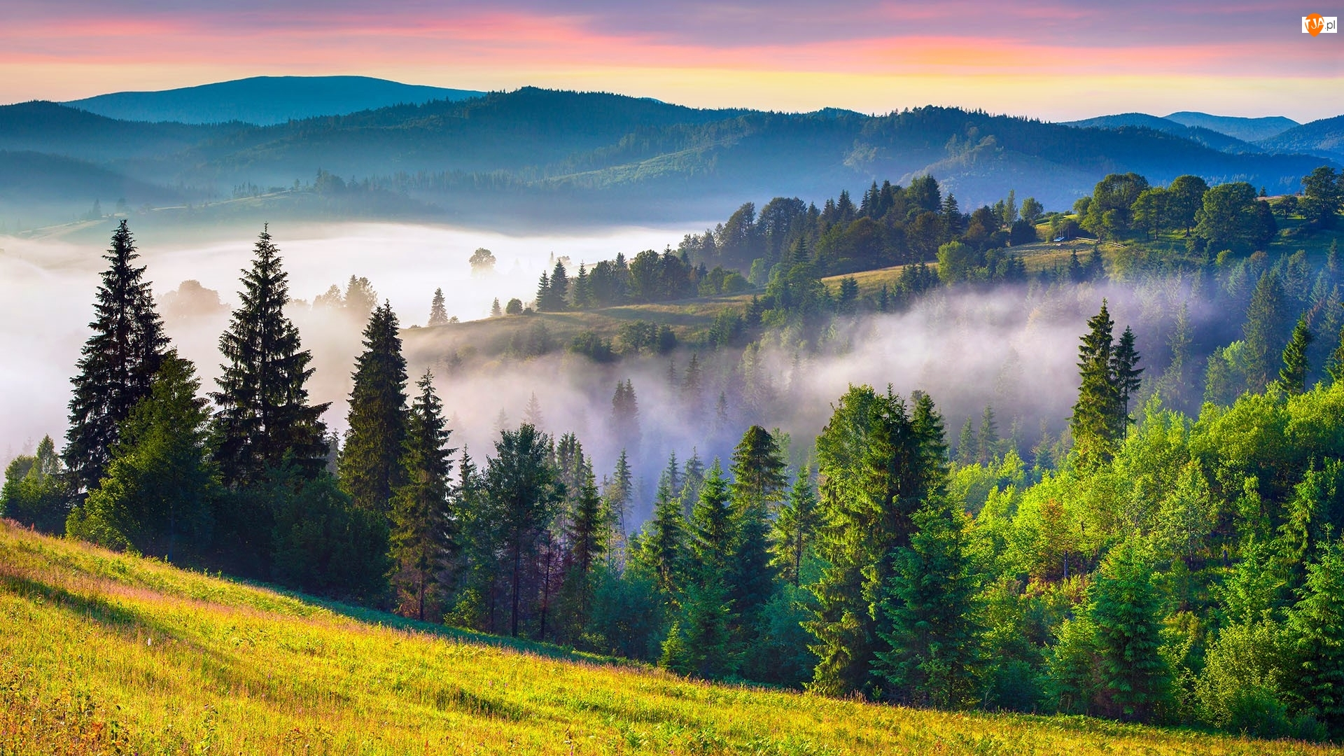 Mgła, Łąka, Lasy, Góry, Wschód słońca