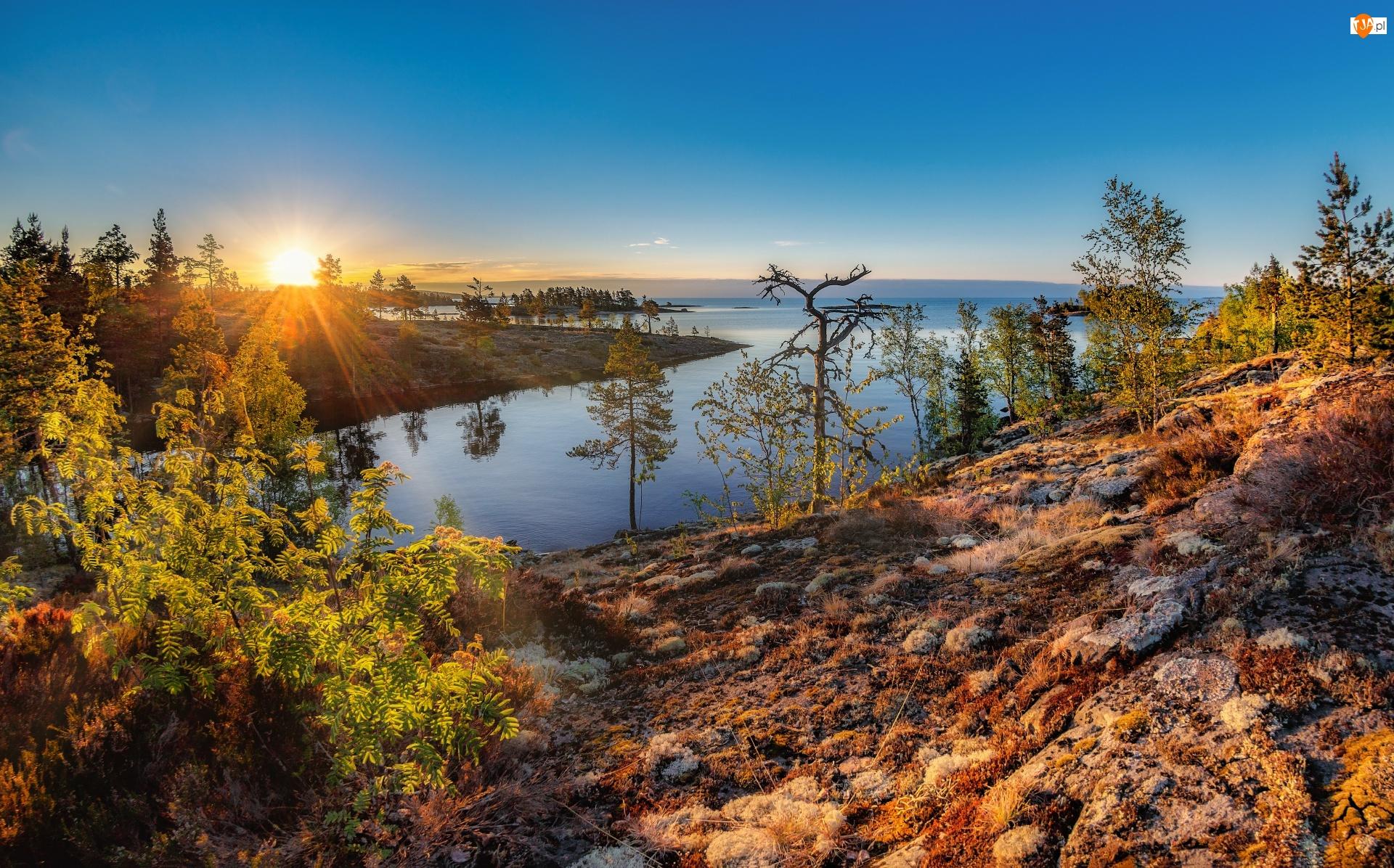 Wschód słońca, Jesień, Jezioro, Skały, Drzewa, Kamienie