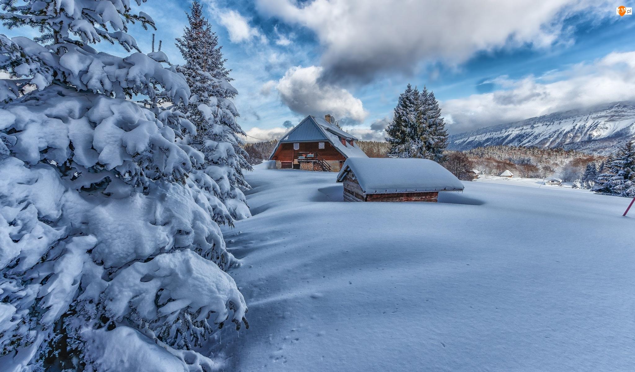 Domy, Zima, Śnieg, Drzewa