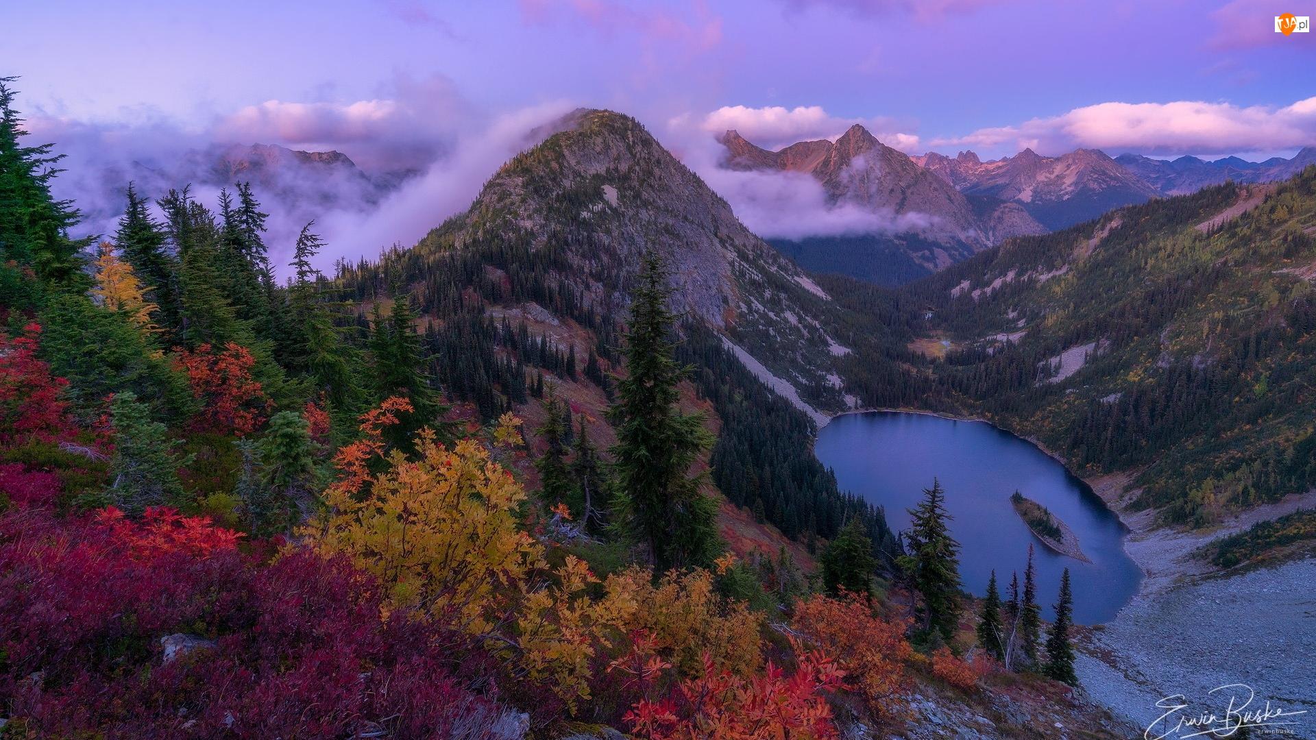 Krzewy, Park Narodowy Północnych Gór Kaskadowych, Drzewa, Stan Waszyngton, Góry, Kolorowe, Stany Zjednoczone, Jezioro
