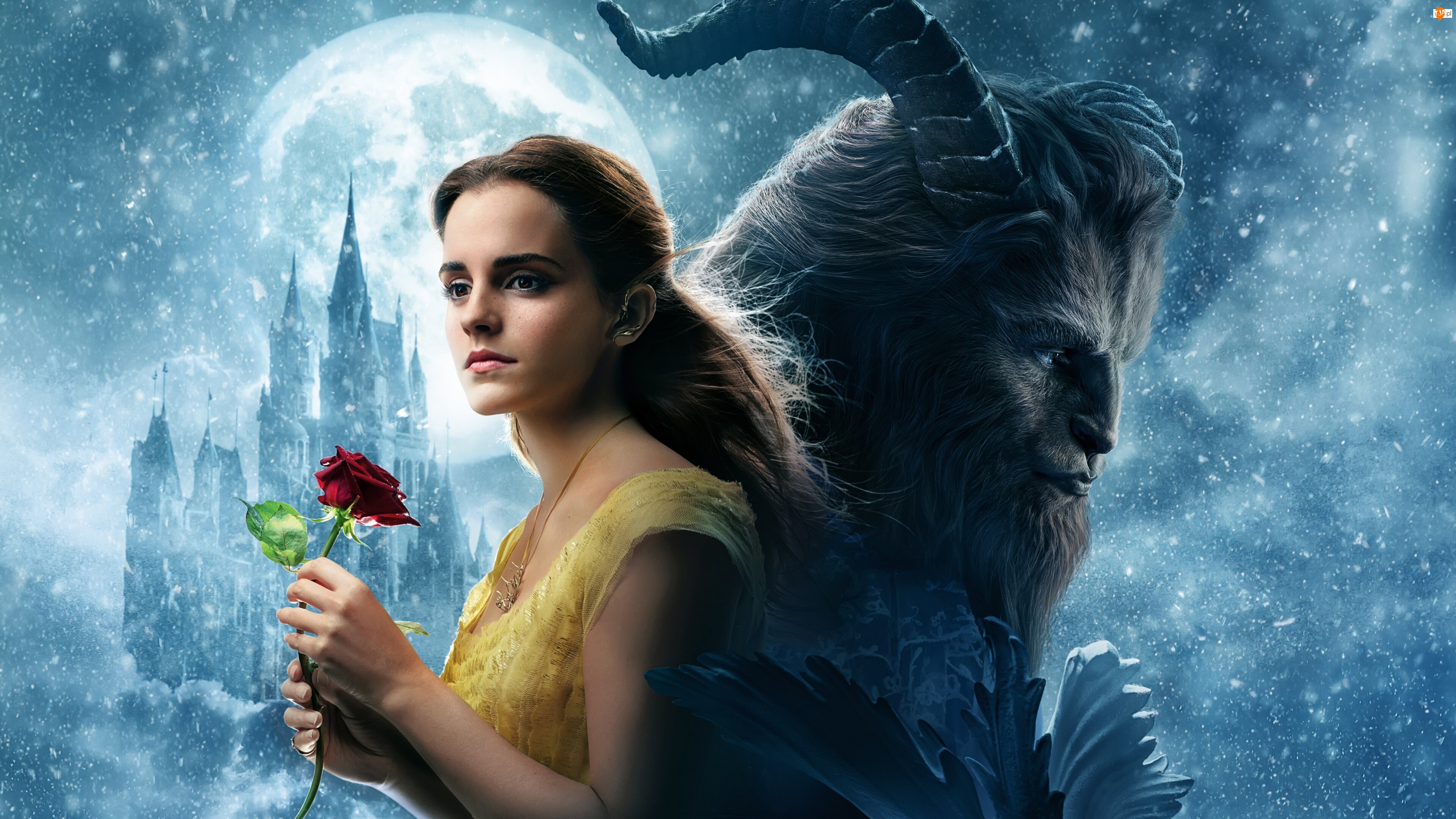 Beauty and the Beast, Emma Watson, Piękna i Bestia, Film, Aktorka
