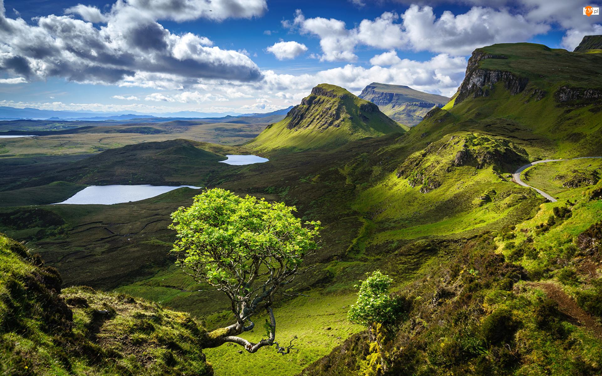 Szkocja, Jeziora, Quiraing, Wyspa Skye, Osuwisko, Zielone, Drzewo, Góry, Chmury