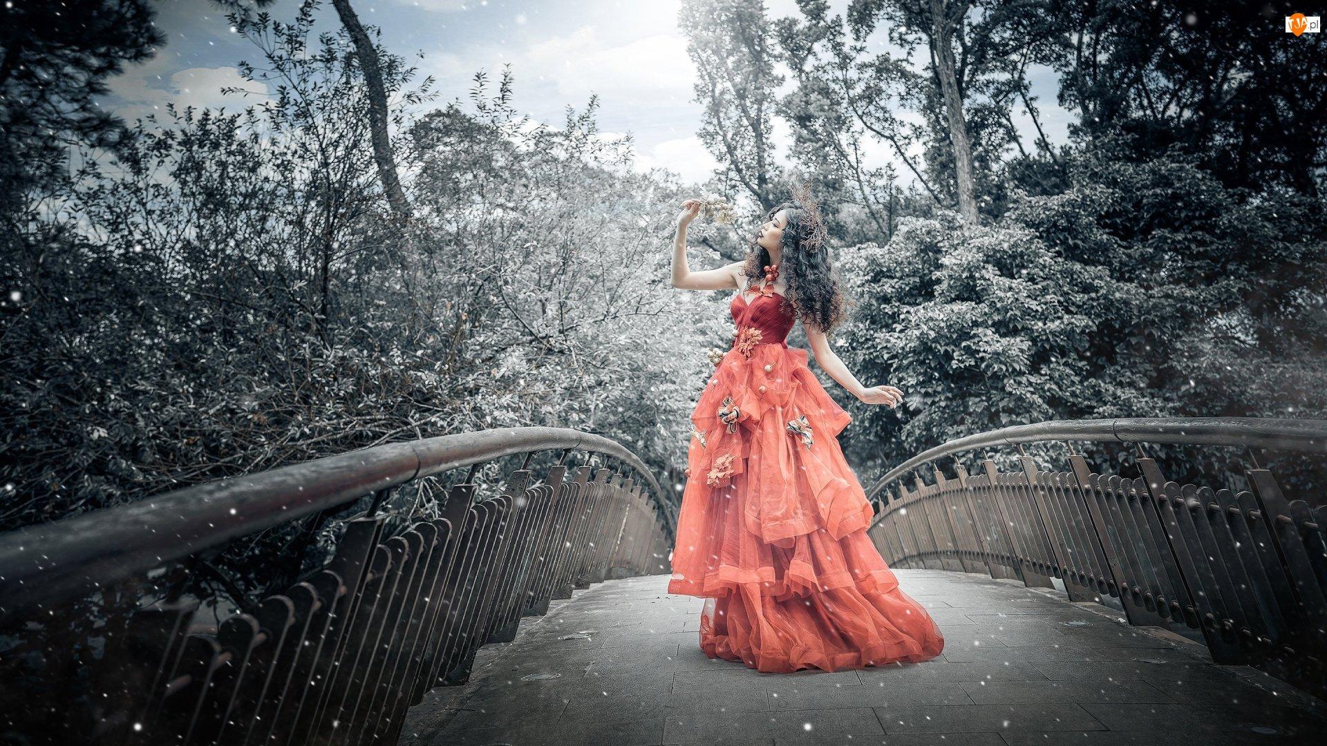 Suknia, Drzewa, Pomarańczowa, Kobieta, Most