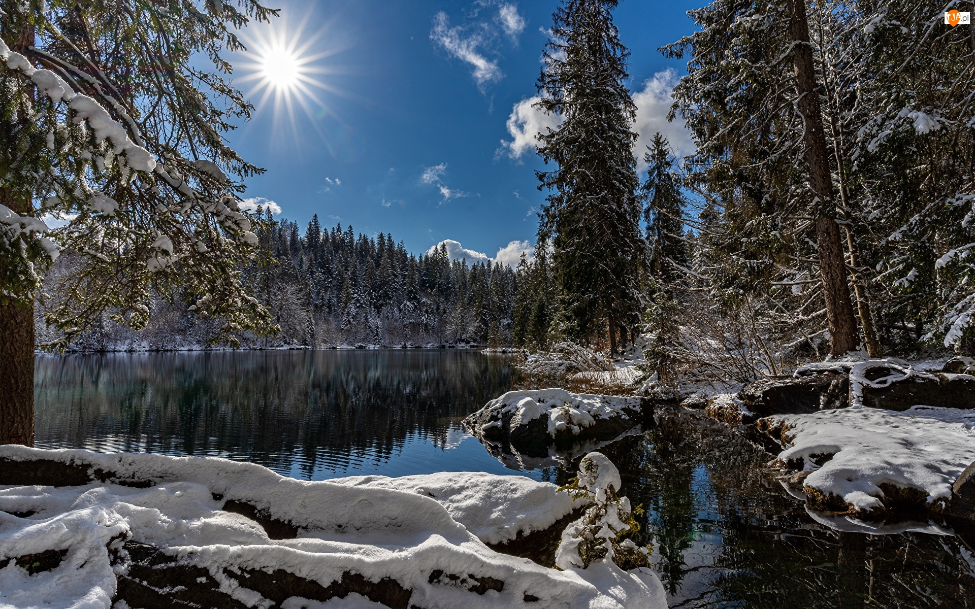 Szwajcaria, Jezioro, Kanton Gryzonia, Drzewa, Śnieg, Lake Cresta, Promienie słońca, Zima, Las