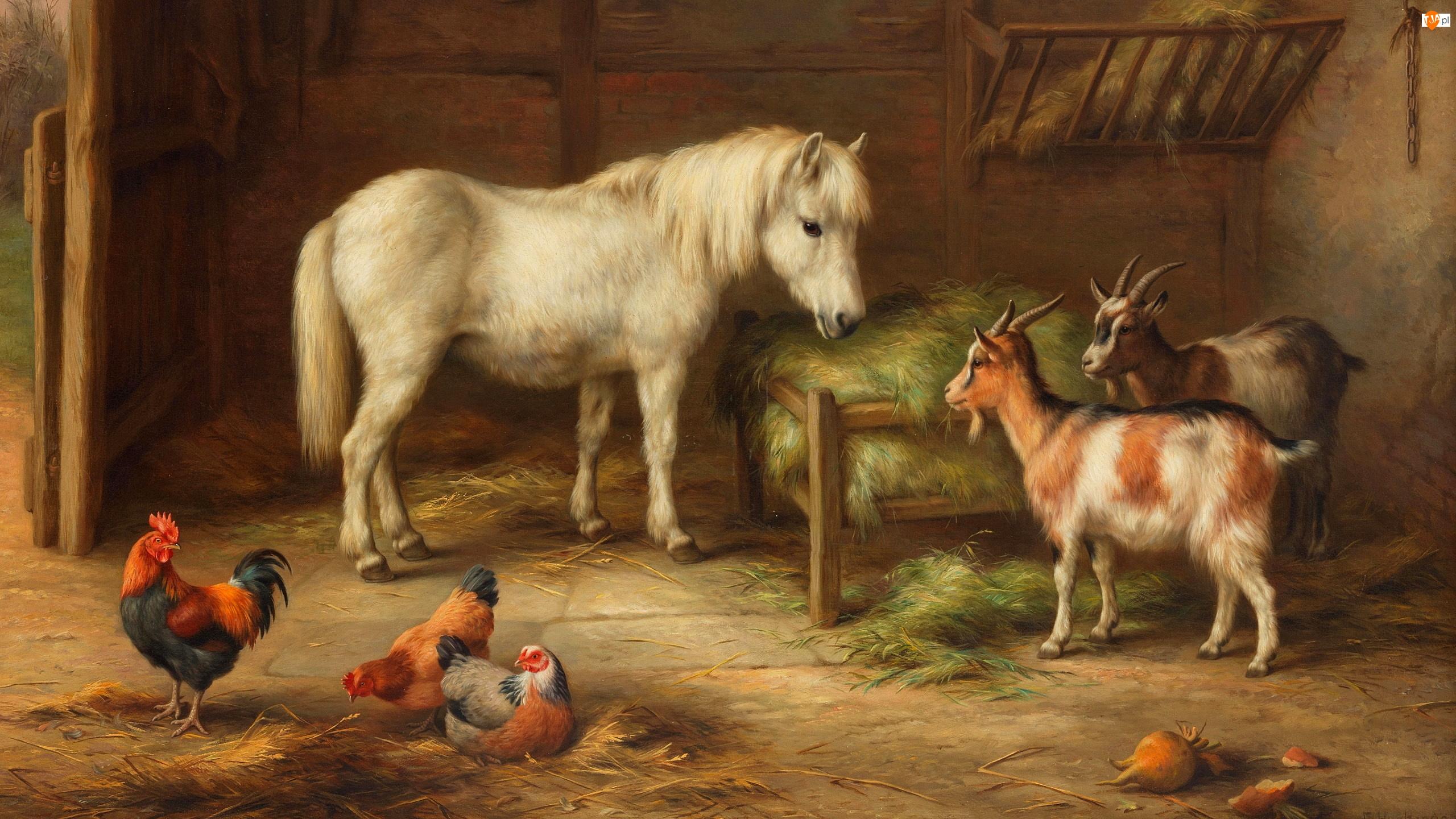 Obraz, Edgar Hunt, Stodoła, Malarstwo, Kury, Kozy, Koń