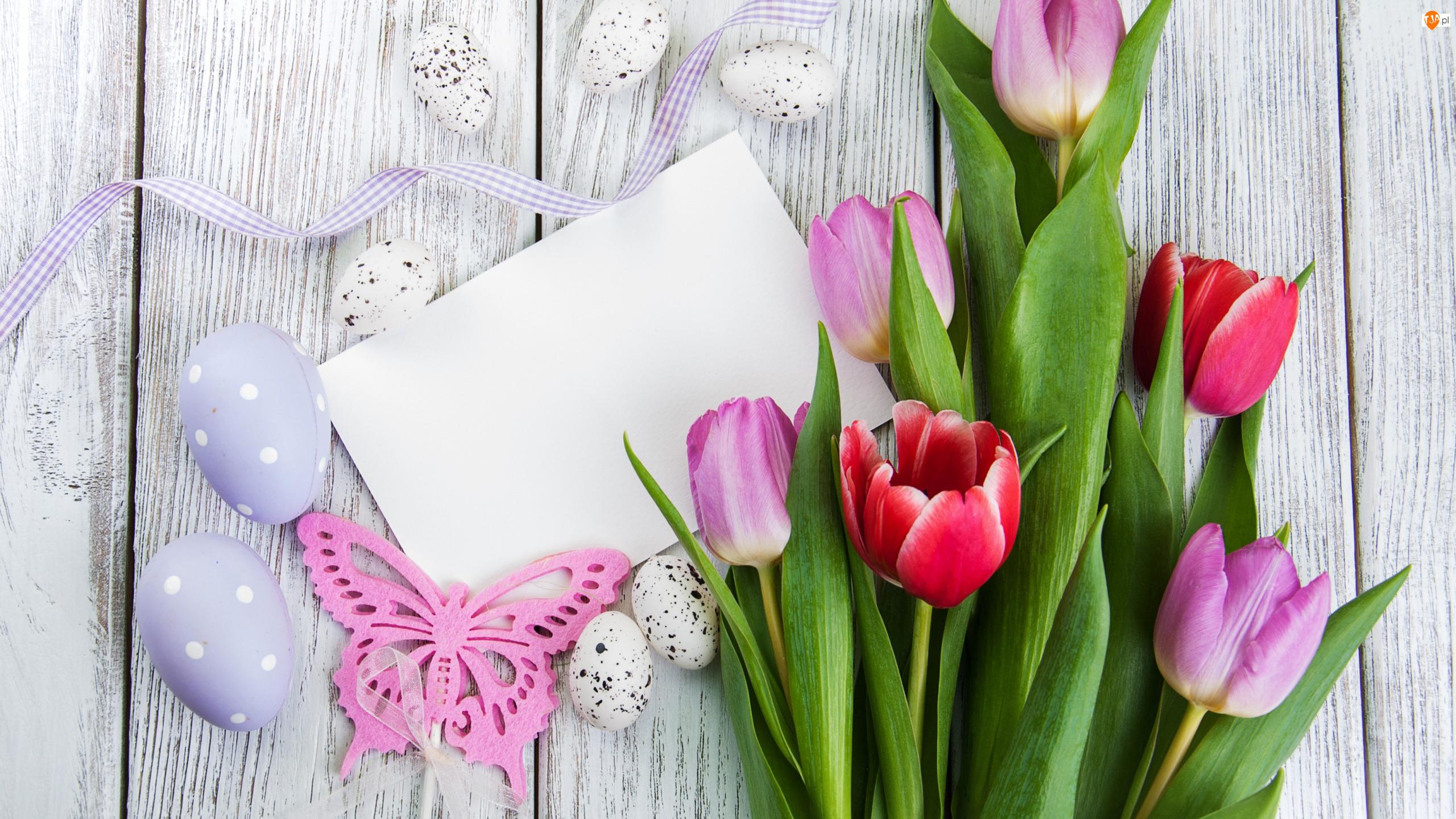 Pisanki, Wstążka, Tulipany, Wielkanoc, Motylek