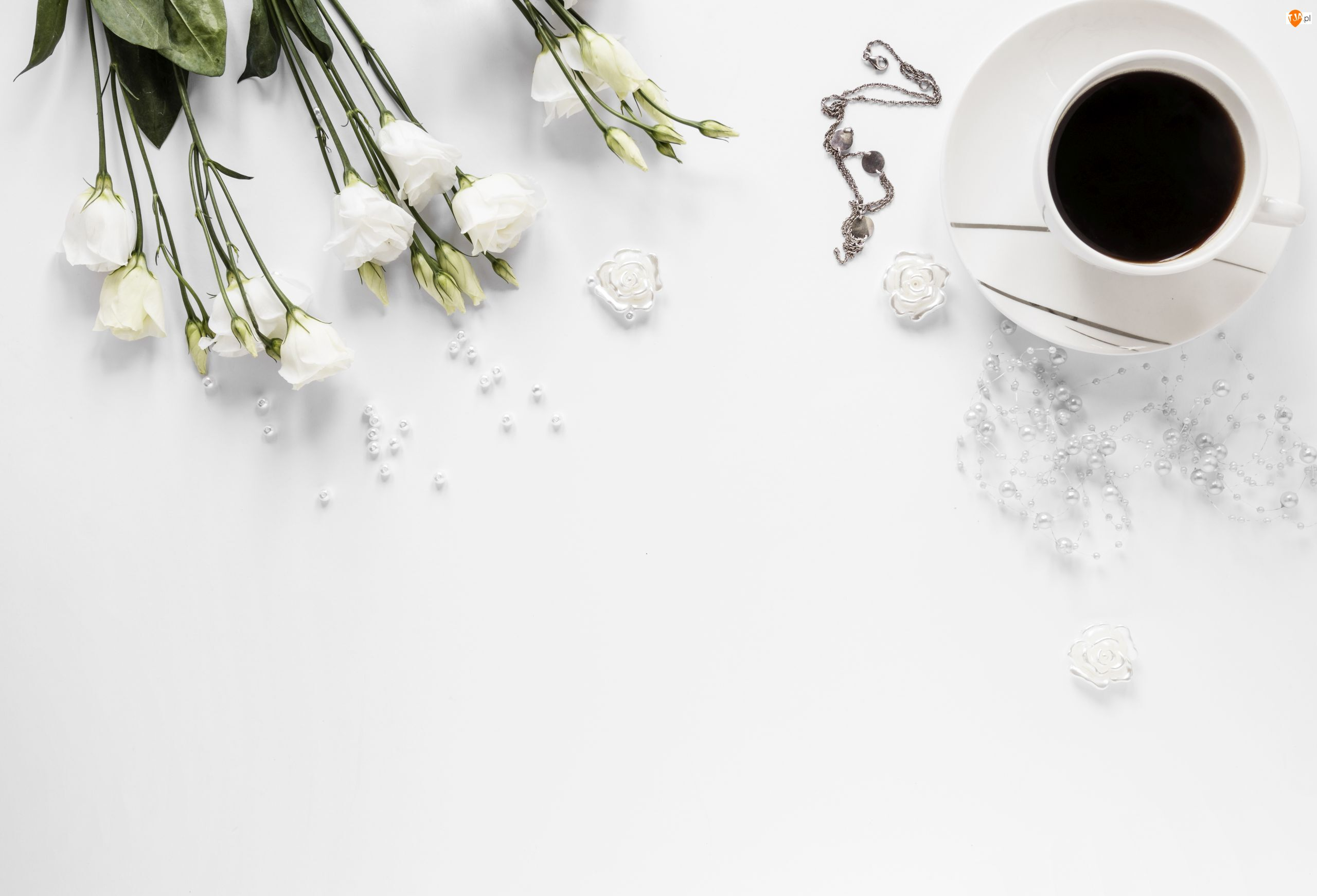 Białe, Kwiaty, Kawa, Tło, Eustomy, Białe