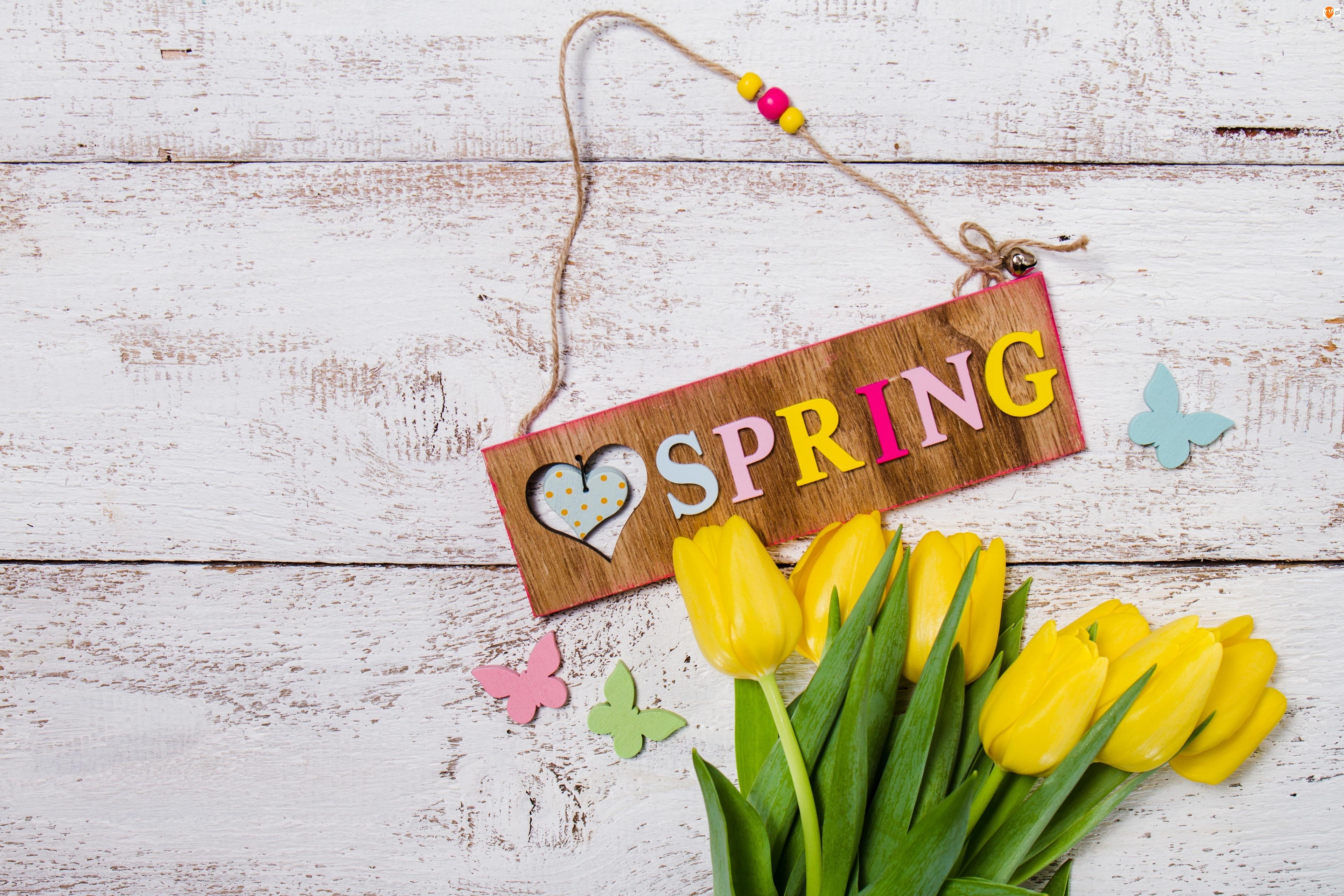 Zawieszka, Wiosna, Tulipany