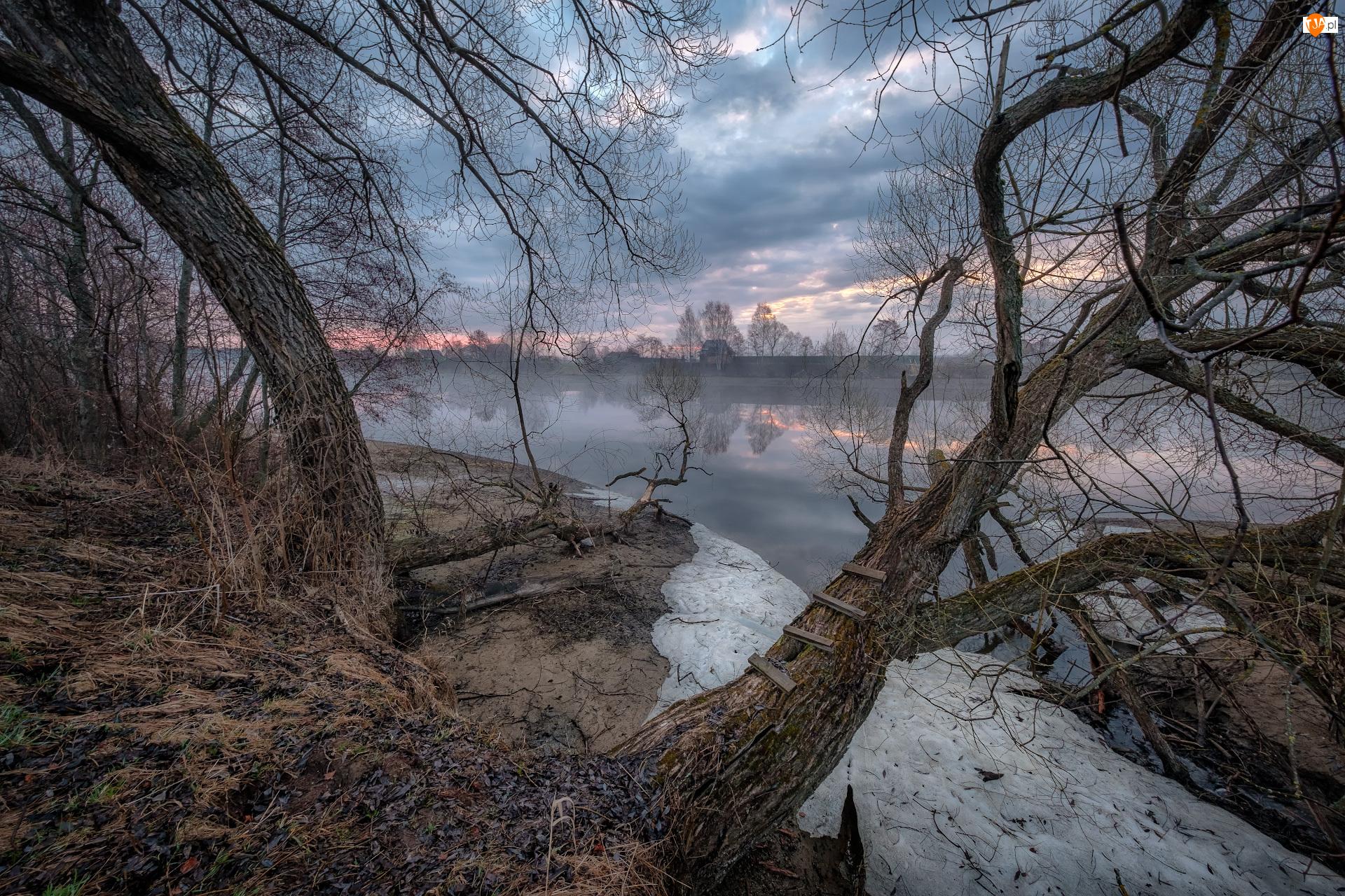 Domy, Mgła, Łotwa, Rzeka Dubna, Łatgalia, Drzewa, Bezlistne