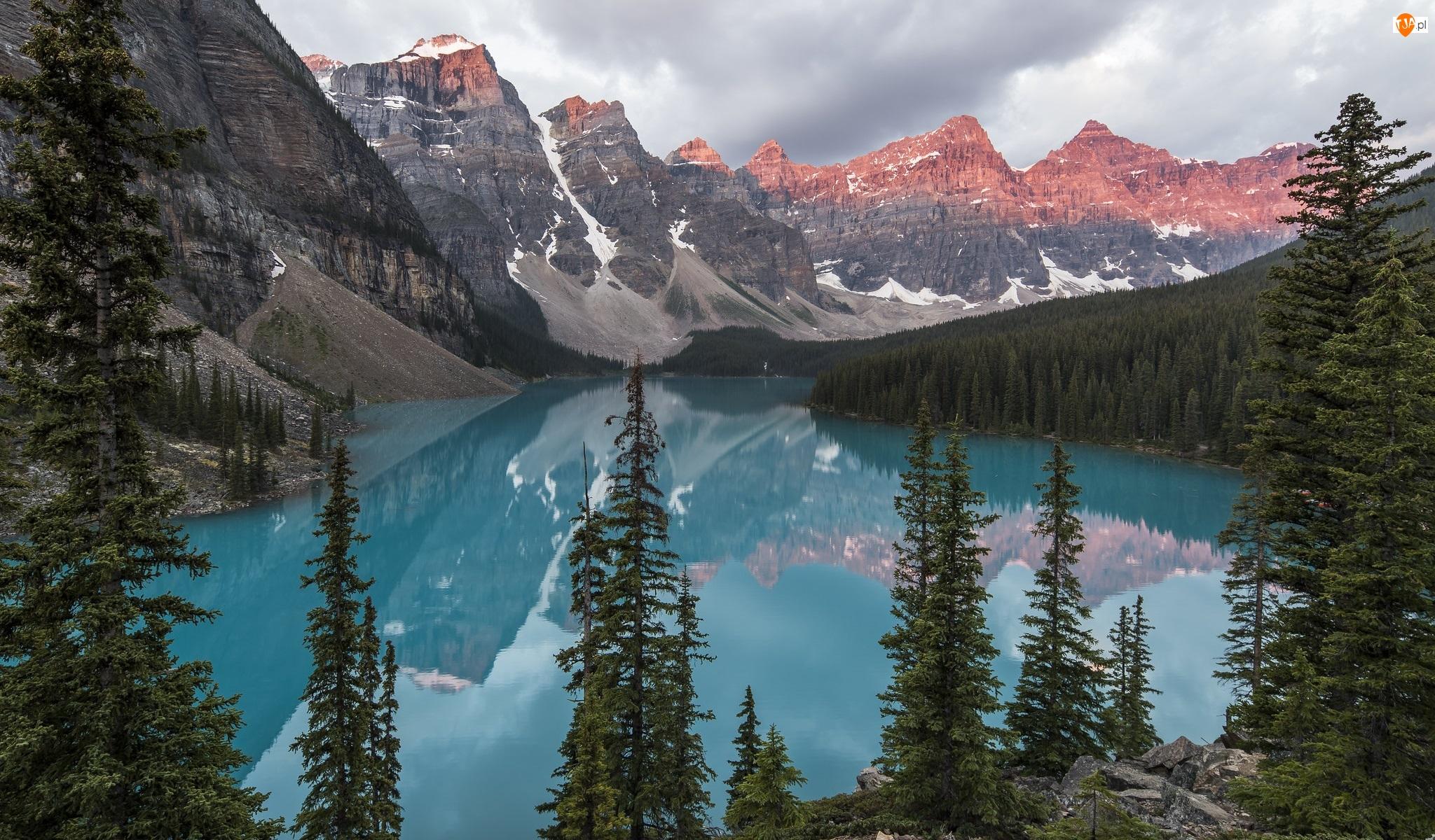 Kanada, Prowincja Alberta, Góry, Park Narodowy Banff, Świerki, Drzewa, Jezioro Moraine