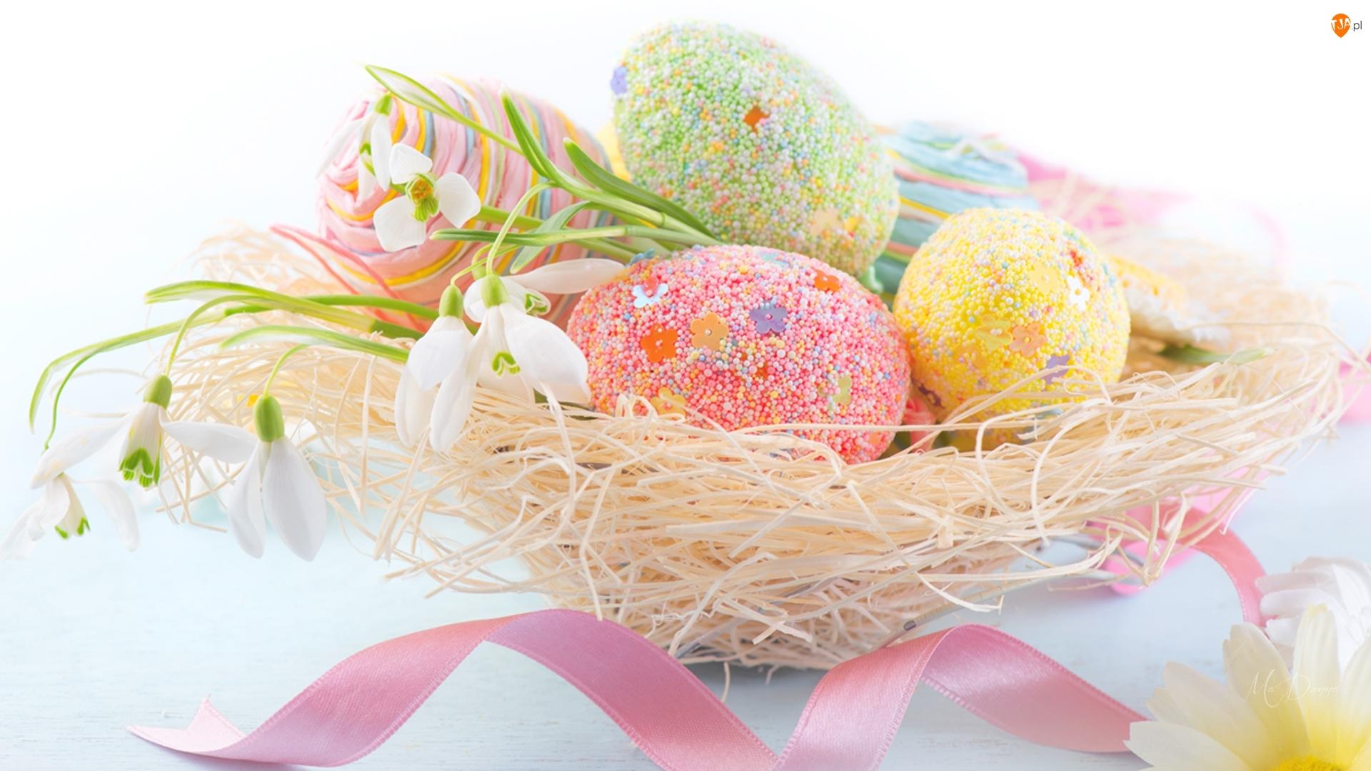 Przebiśniegi, Wielkanoc, Pisanki, Jajka, Gniazdo
