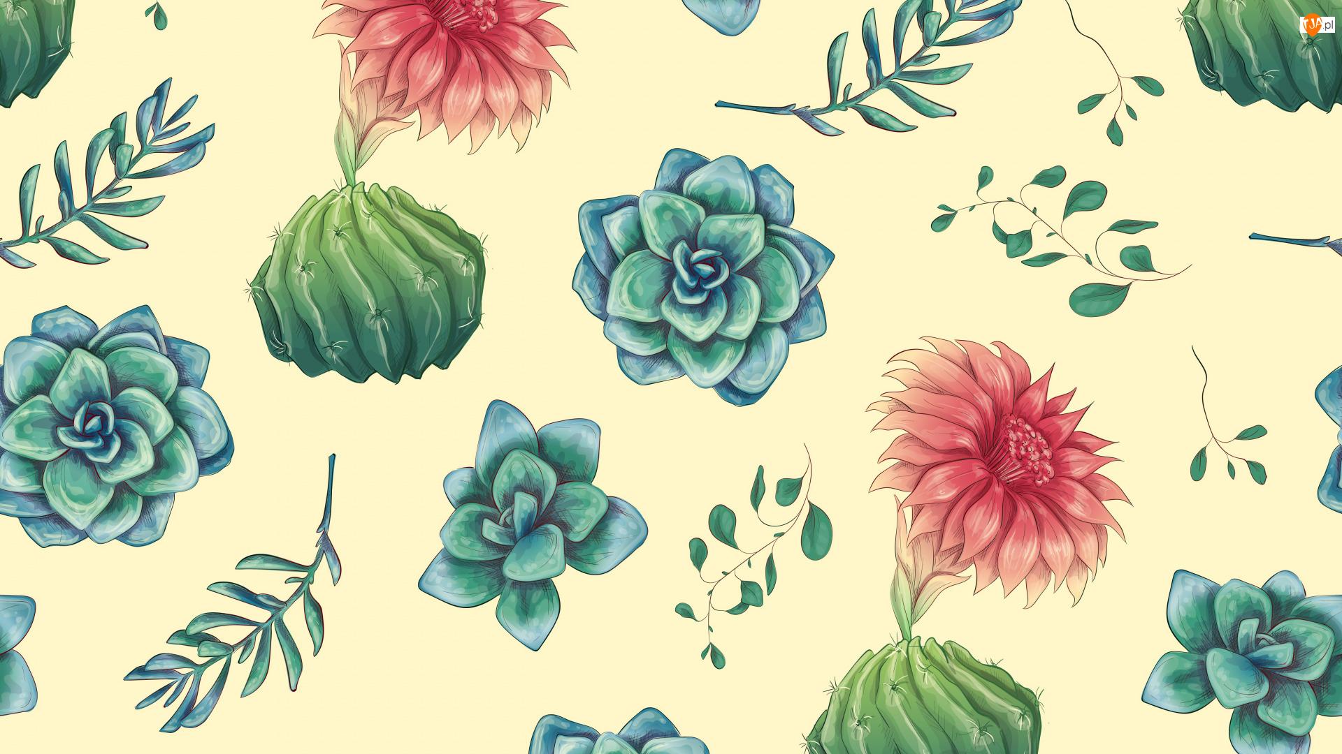 Tekstura, Kwiaty, Liście, Kaktusy