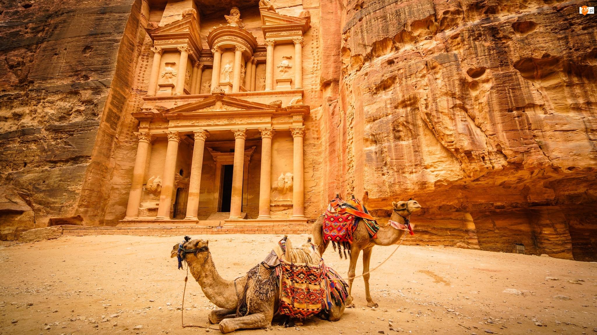Petra, Skarbiec Faraona Al-Chazna, Wielbłądy, Jordania, Różowe Miasto, Skały, Ruiny