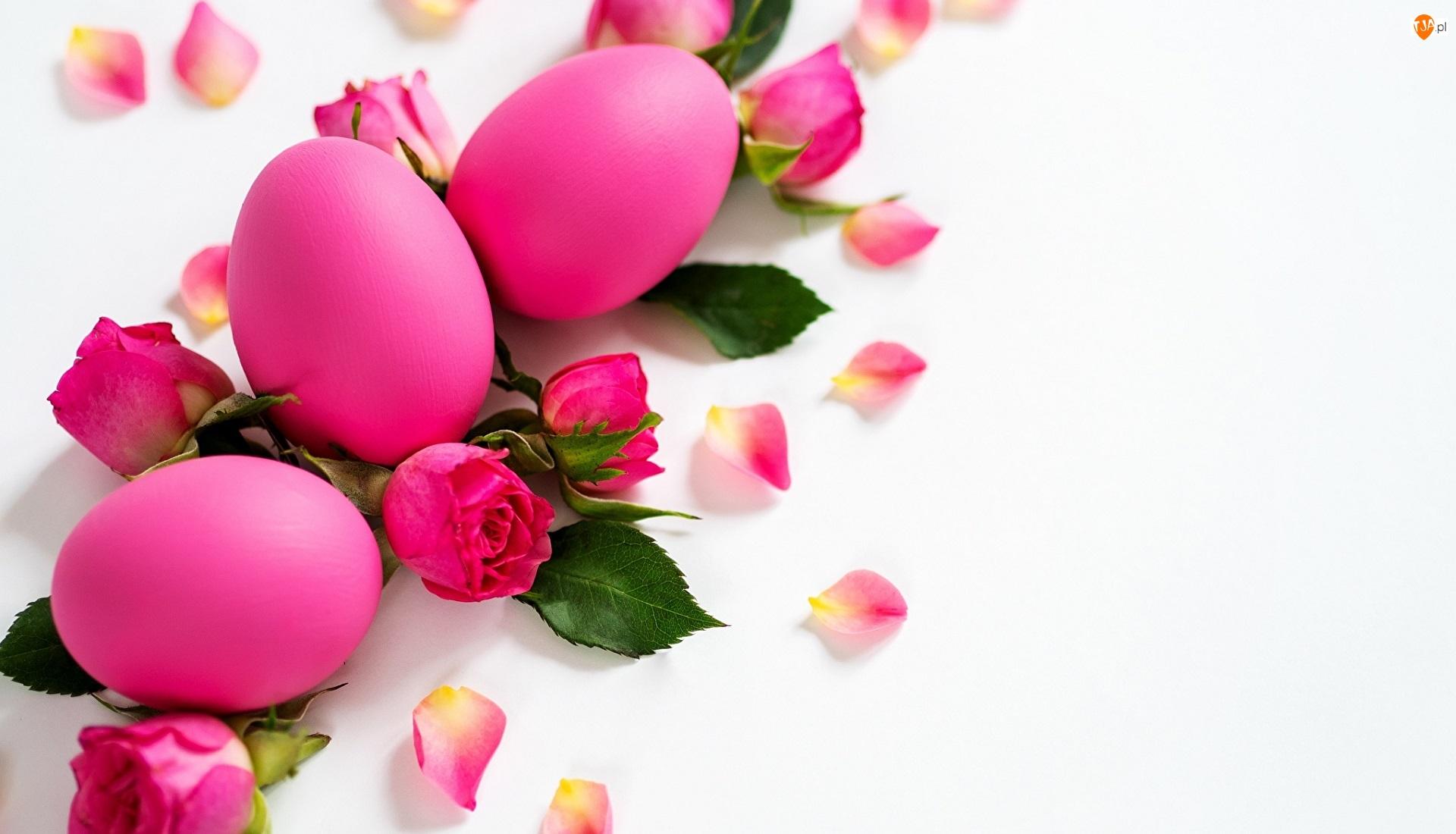 Różowe, Wielkanoc, Pisanki, Płatki, Jajka, Róże
