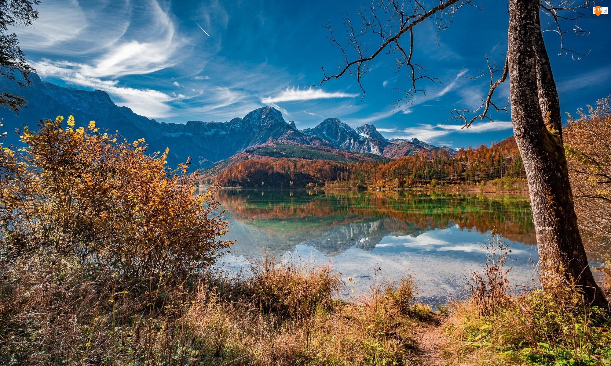 Góry, Alpy, Trawa, Austria, Drzewa, Jesień, Jezioro Almsee