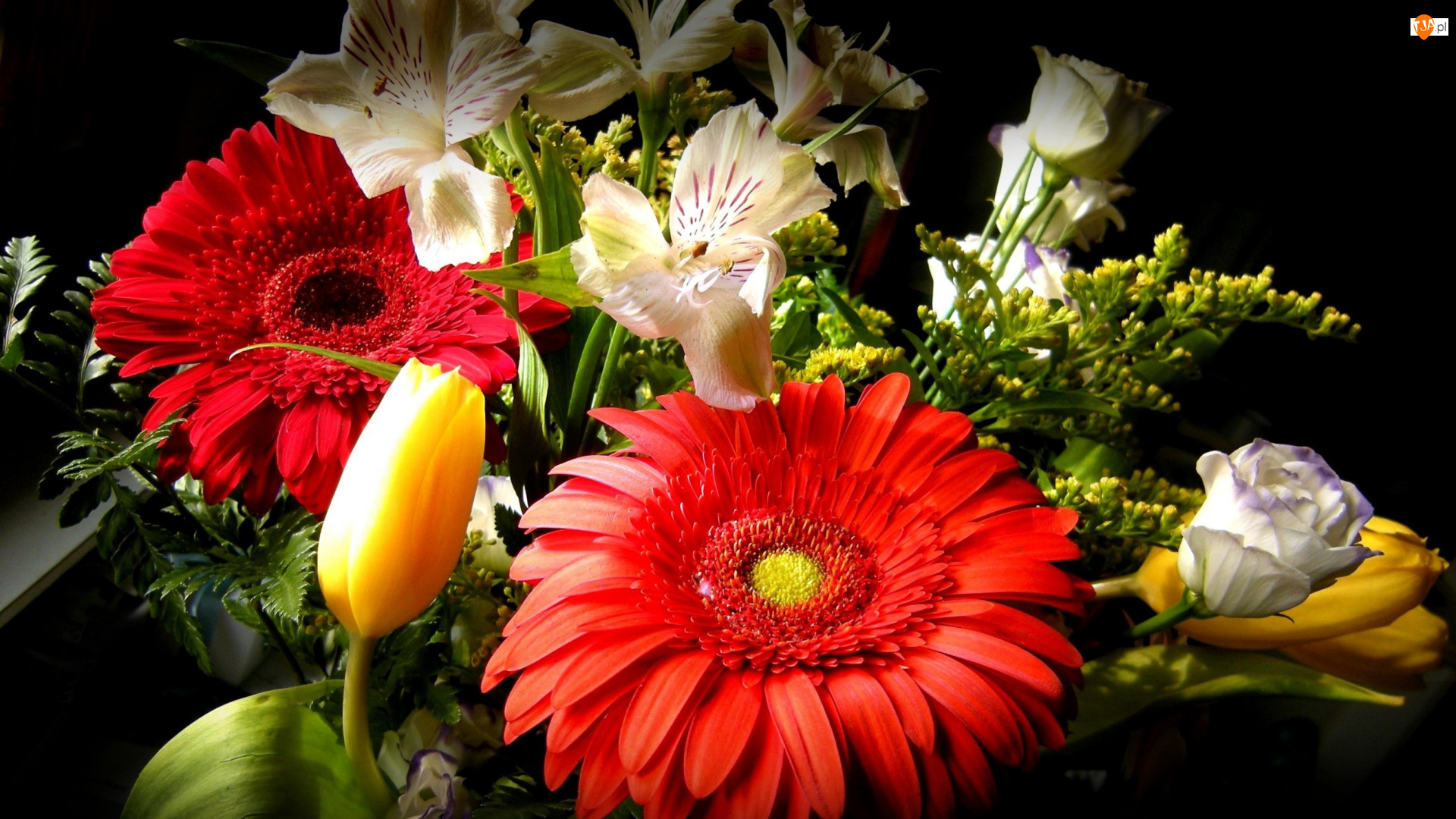 Alstremeria, Kwiaty, Bukiet, Gerbera