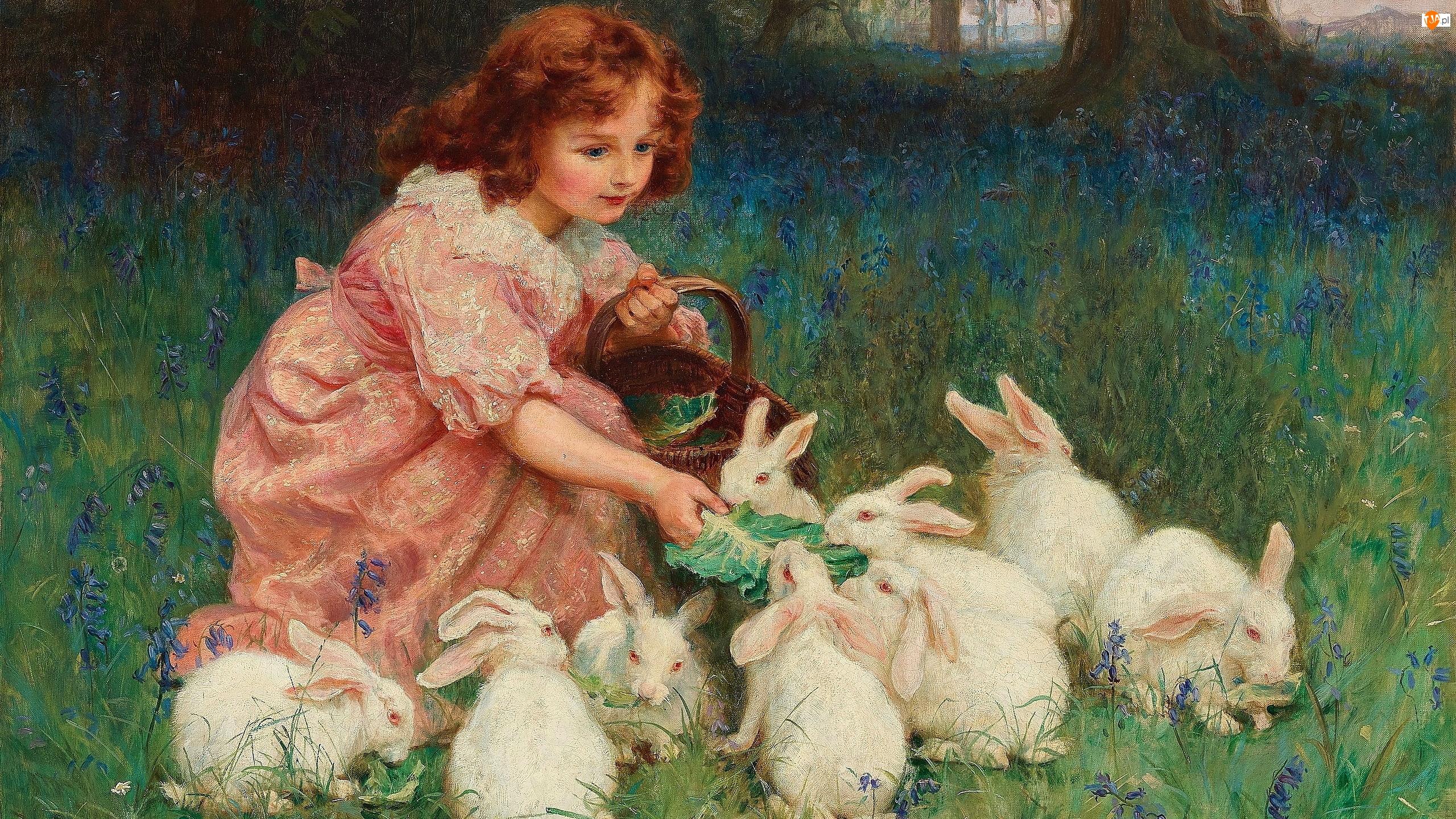 Obraz, Frederick Morgan, Króliki, Malarstwo, Białe, Koszyk, Dziewczynka