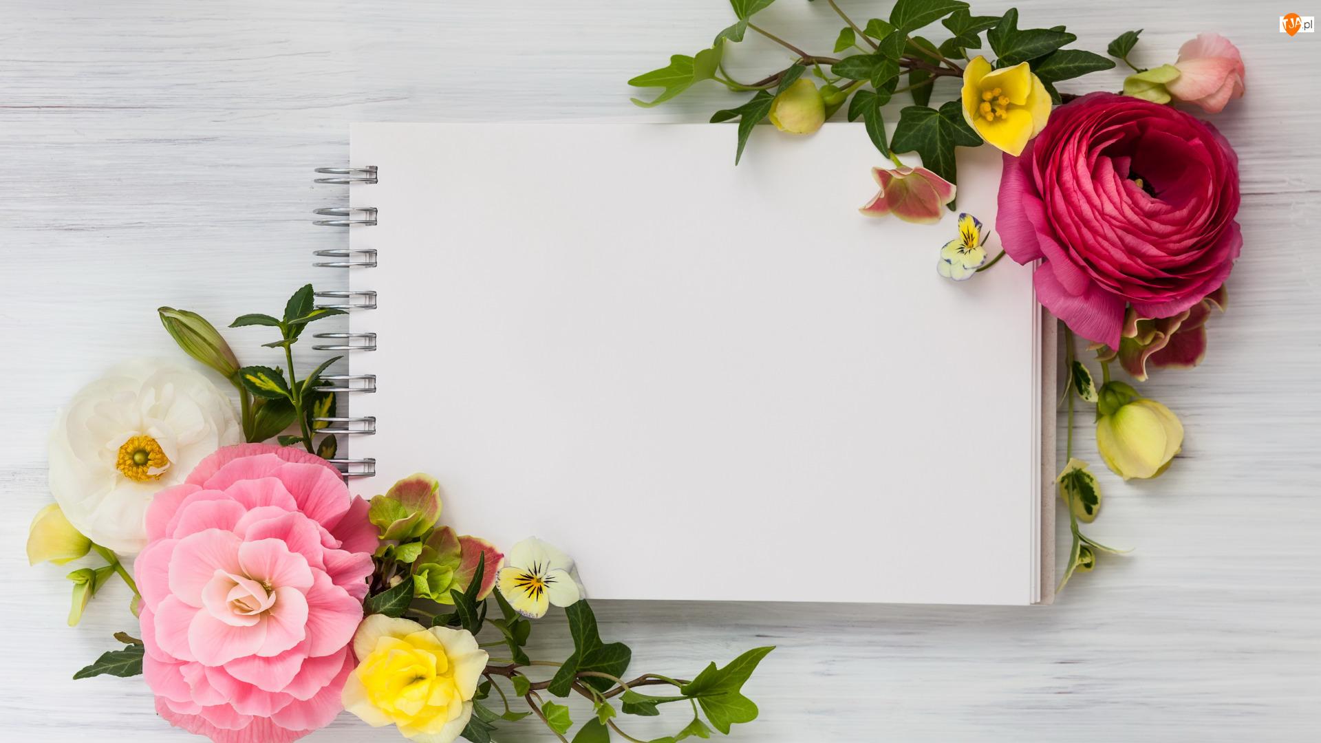 Notatnik, Kwiaty
