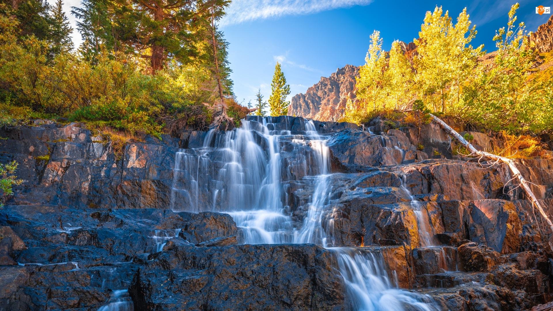 Drzewa, Jesień, Skały, Wodospad, Krzewy