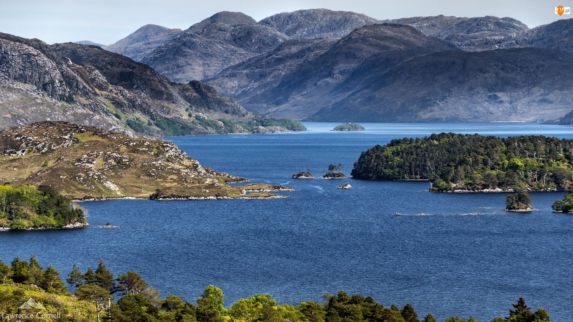 Loch Morar, Góry, Szkocja, Jezioro, Hrabstwo Highland, Drzewa, Wysepki