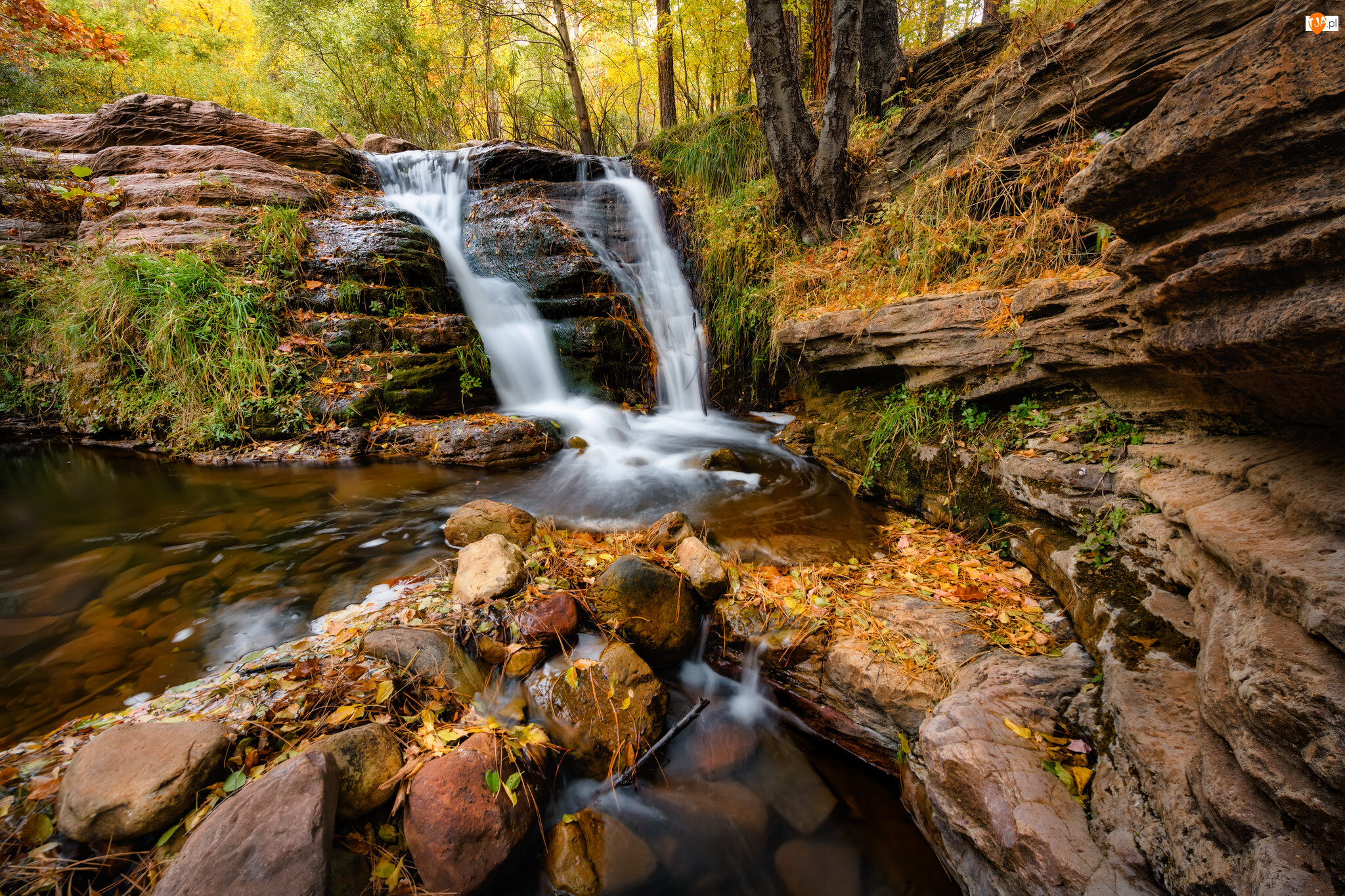 Skały, Rośliny, Rzeka, Wodospad, Kamienie