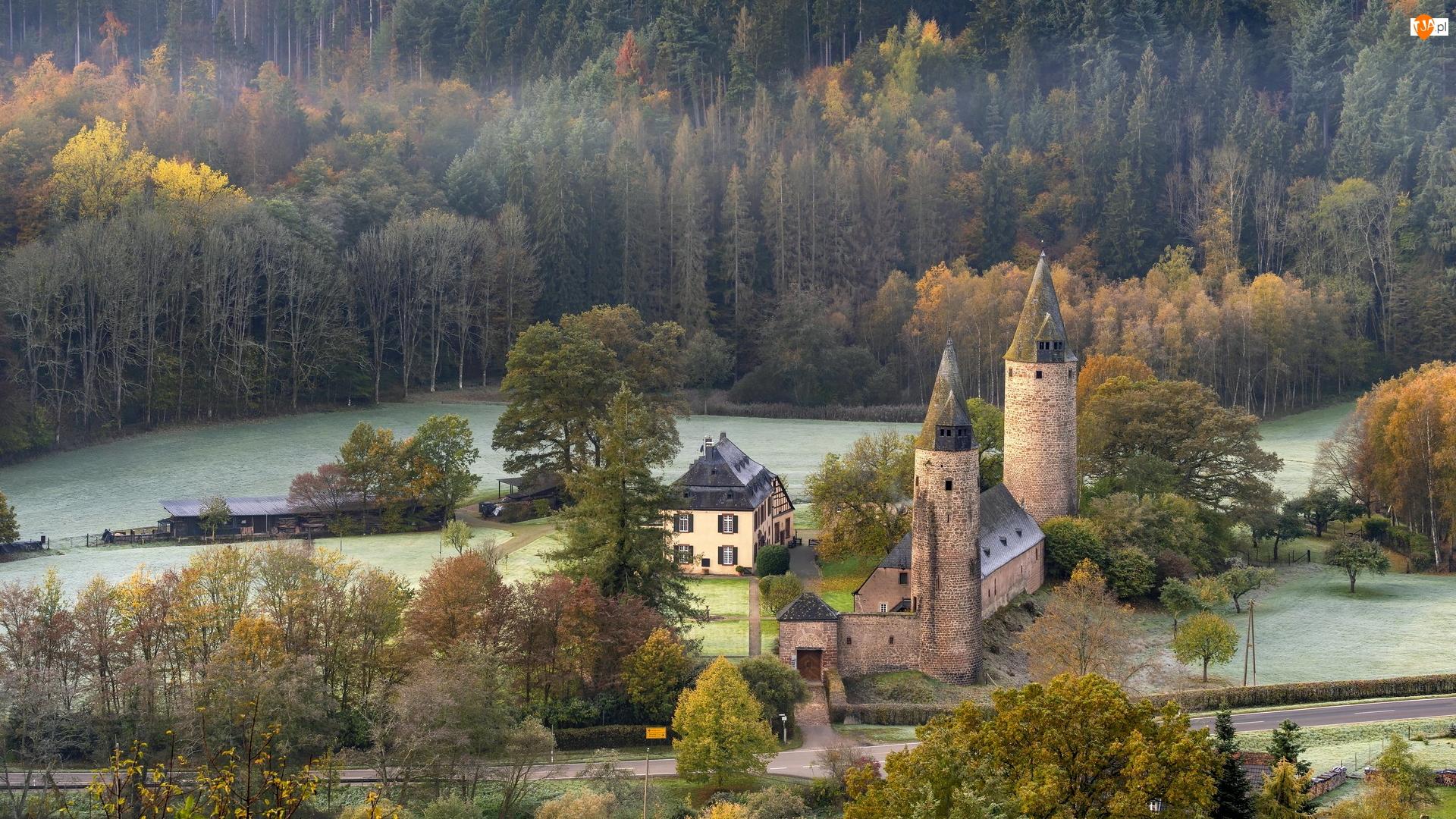 Dom, Zamek w Burch, Drzewa, Niemcy, Las, Nadrenia-Palatynat