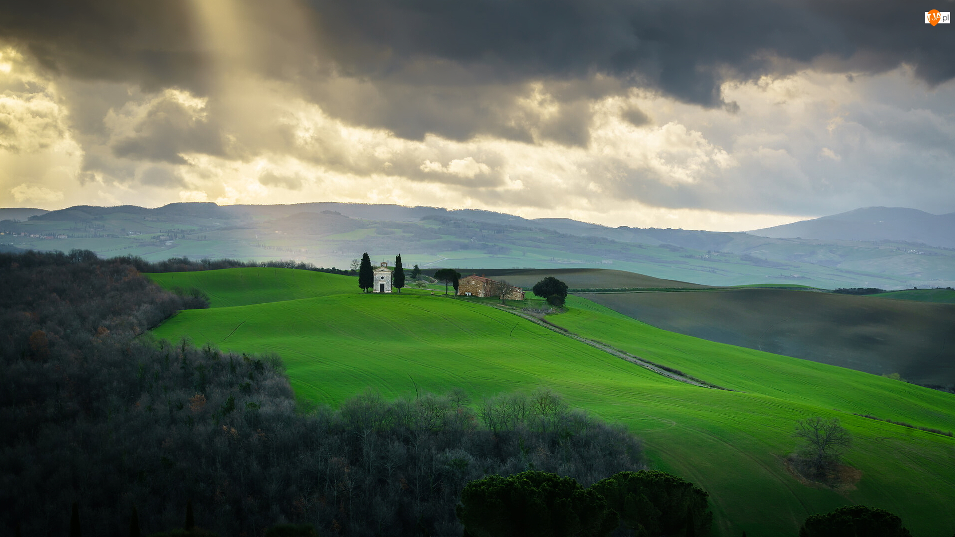 Pola, Drzewa, Włochy, Wzgórza, Toskania, Chmury, Dom