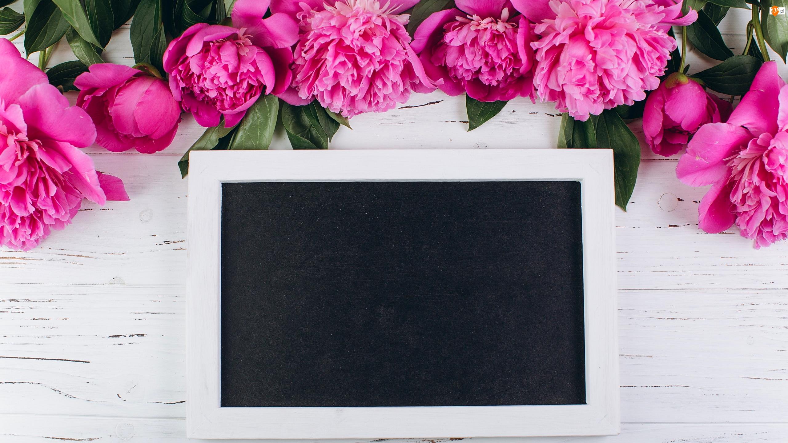 Liście, Deski, Piwonie, Kwiaty, Tabliczka
