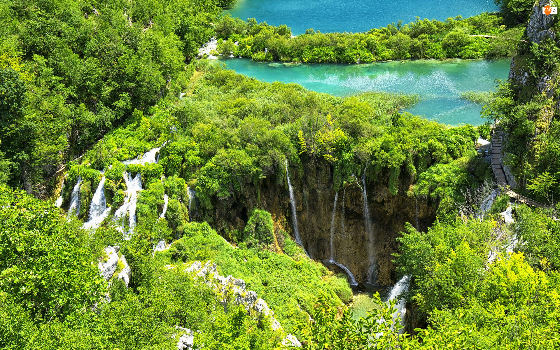Wodospady, Jeziora, Chorwacja, Park Narodowy Jezior Plitwickich, Las