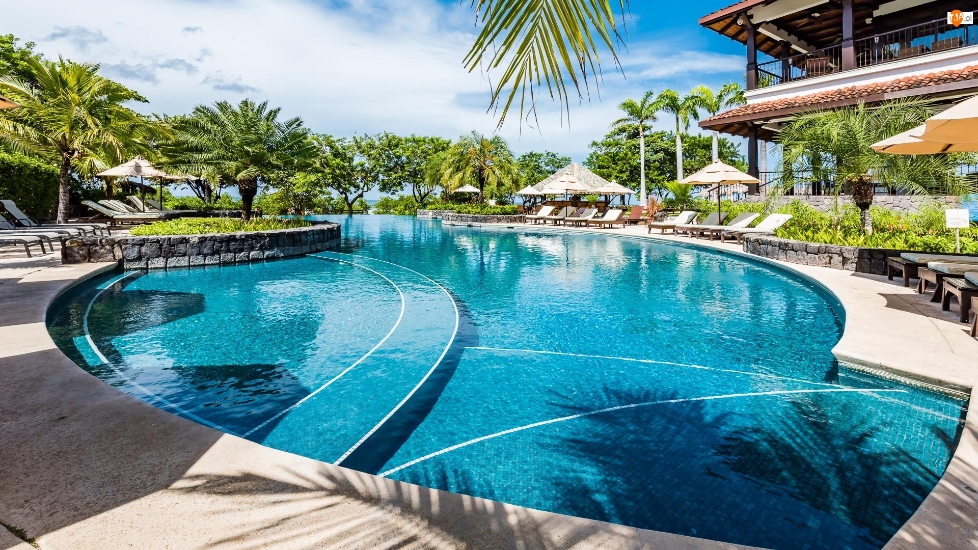 Basen, Palmy, Kostaryka, Wakacje, Tamarindo, Hacienda Pinilla, Hotel