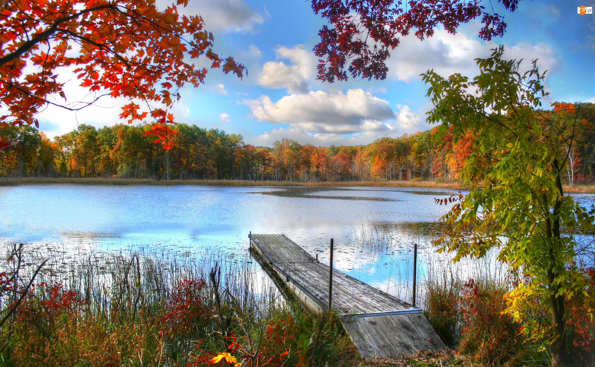 Jesień, Roślinność, Pomost, Jezioro, Drzewa