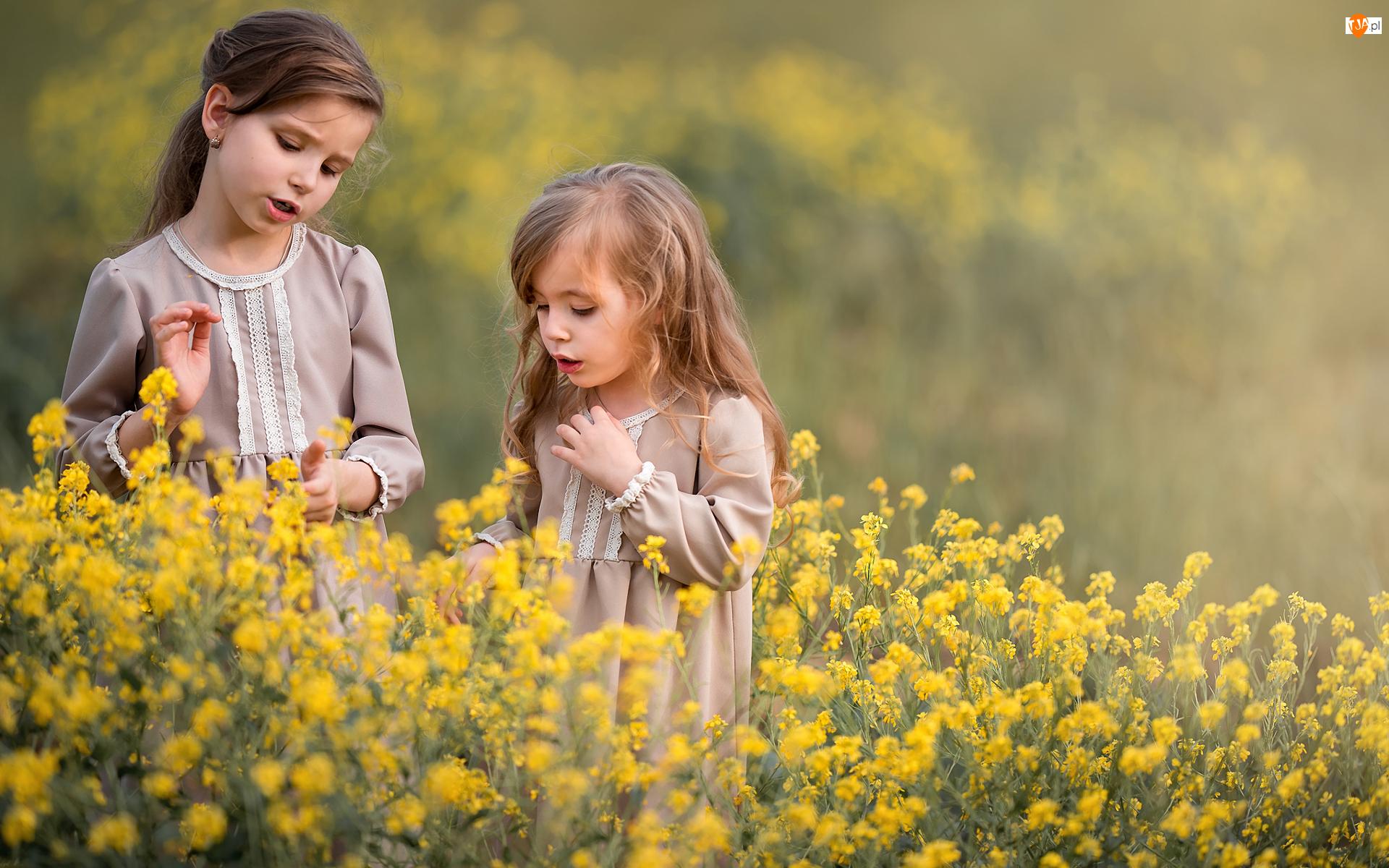 Rzepak, Dzieci, Dziewczynki, Kwiaty