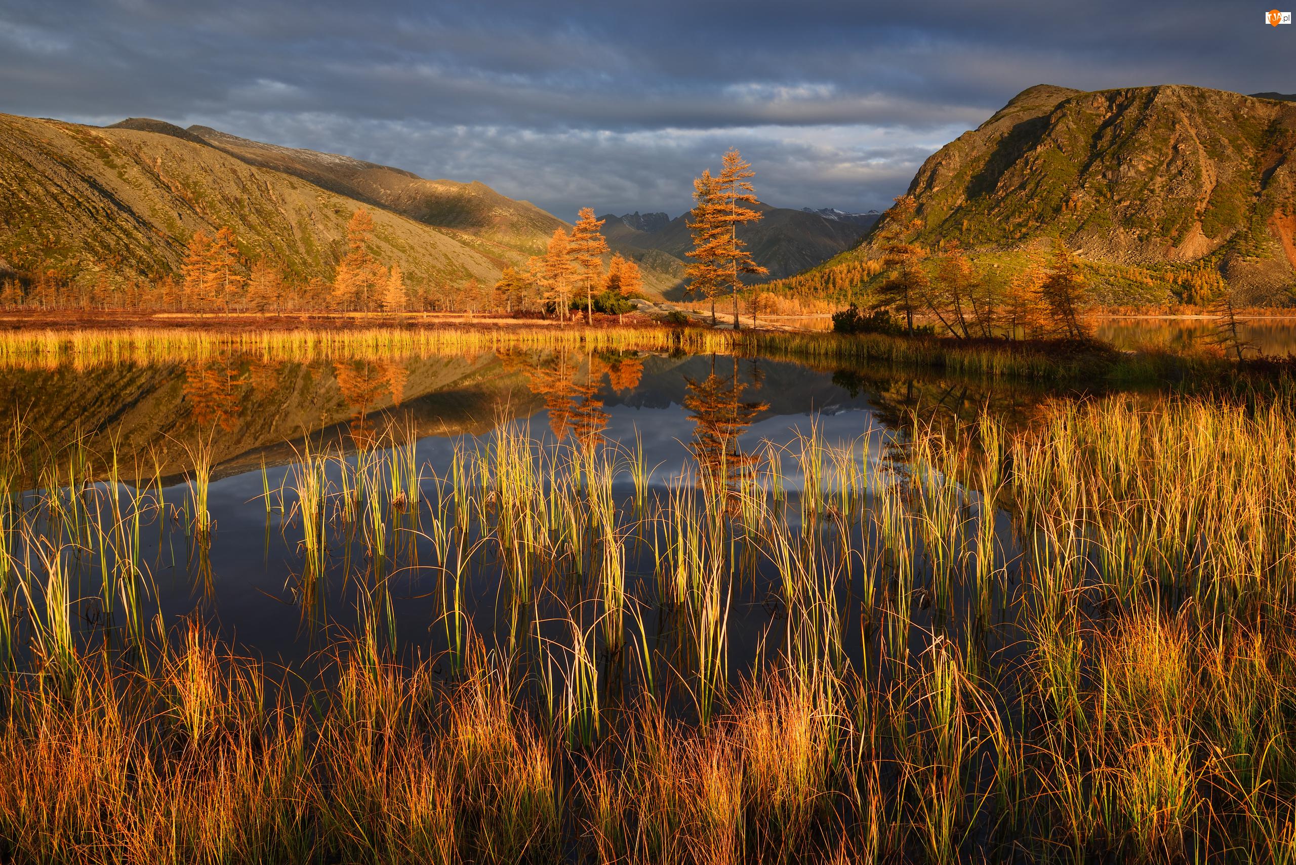 Jesień, Kolorowa, Kołyma, Szuwary, Jack London, Obwód magadański, Roślinność, Jezioro, Chmury, Góry, Rosja