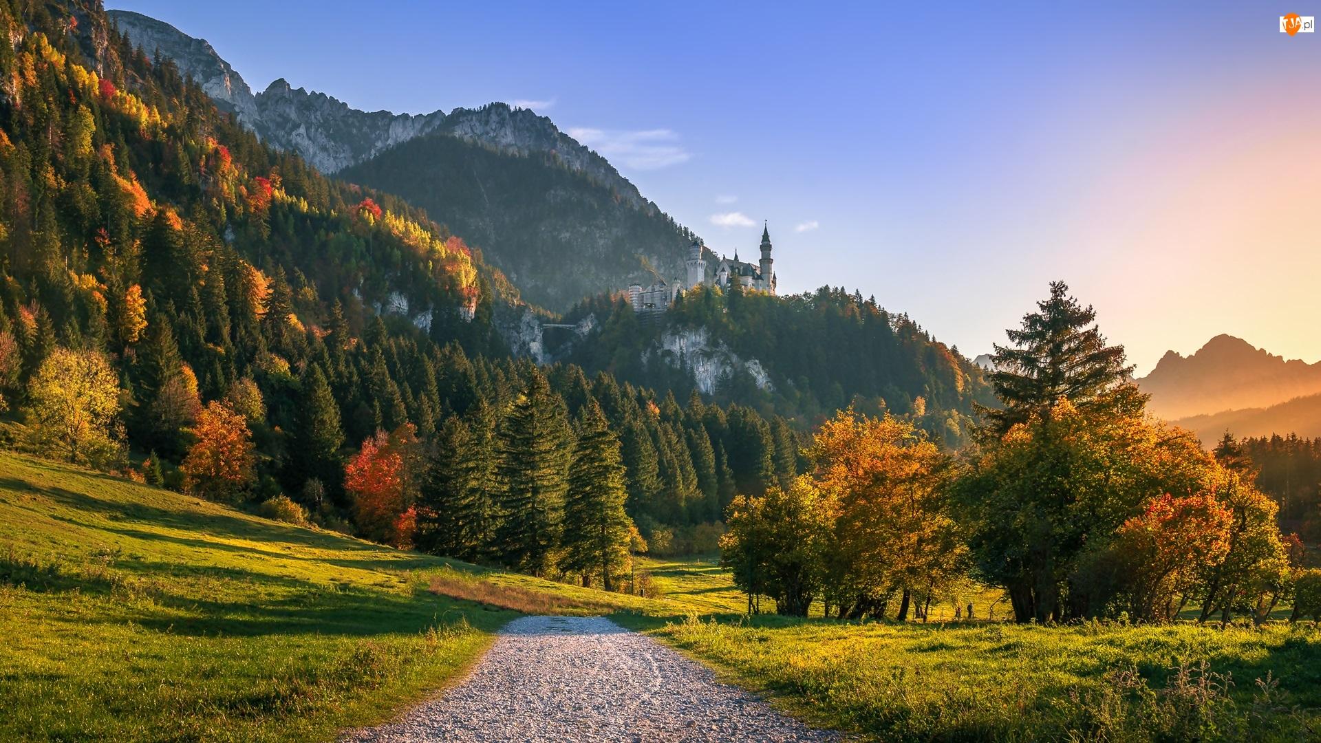 Wschód słońca, Skały, Wzgórza, Góry, Bawaria, Niemcy, Jesień, Zamek Neuschwanstein, Drzewa, Droga