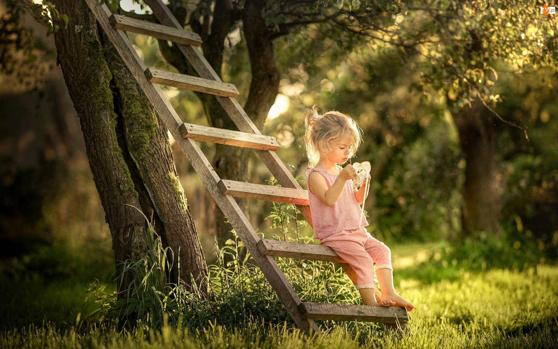 Drzewa, Lato, Drabina, Dziecko, Ogród, Dziewczynka