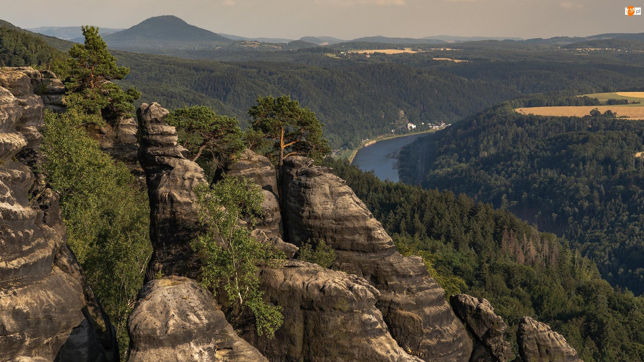 Drzewa, Skały, Rzeka Łaba, Niemcy, Park Narodowy Saskiej Szwajcarii, Góry Połabskie